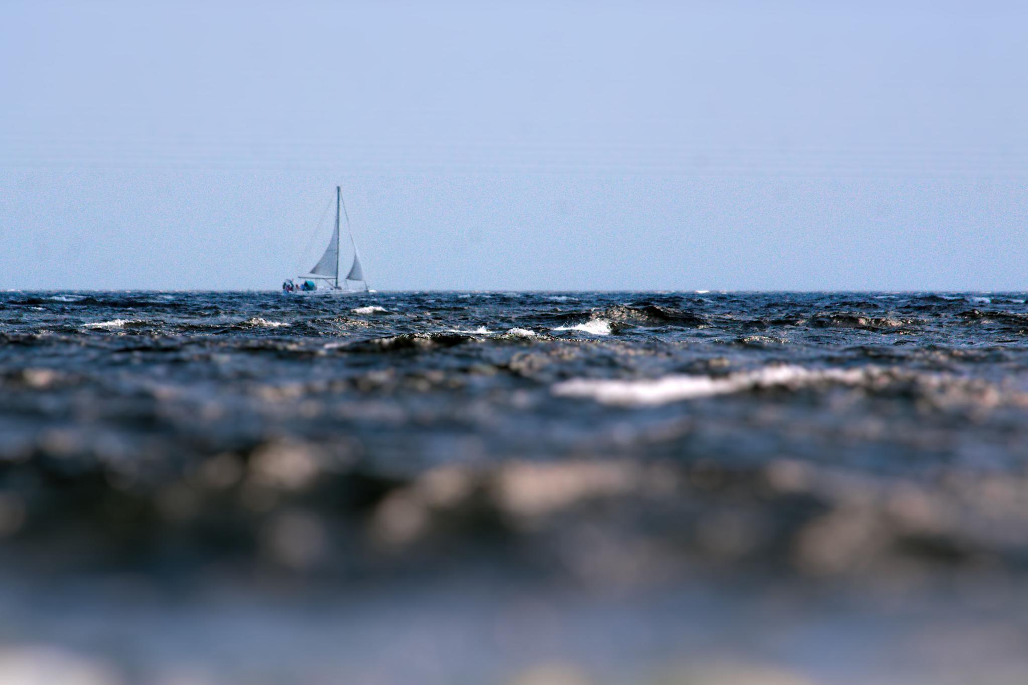 Sail by ochemodan