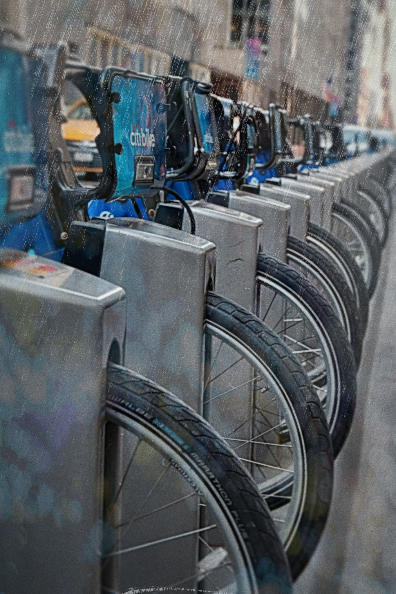 Citibikes by ochemodan