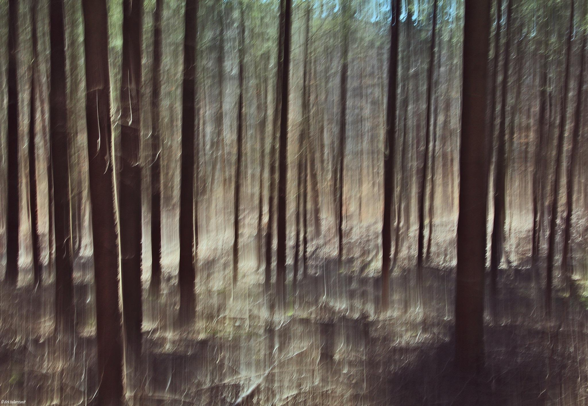 twisted II by rocksyou.photography