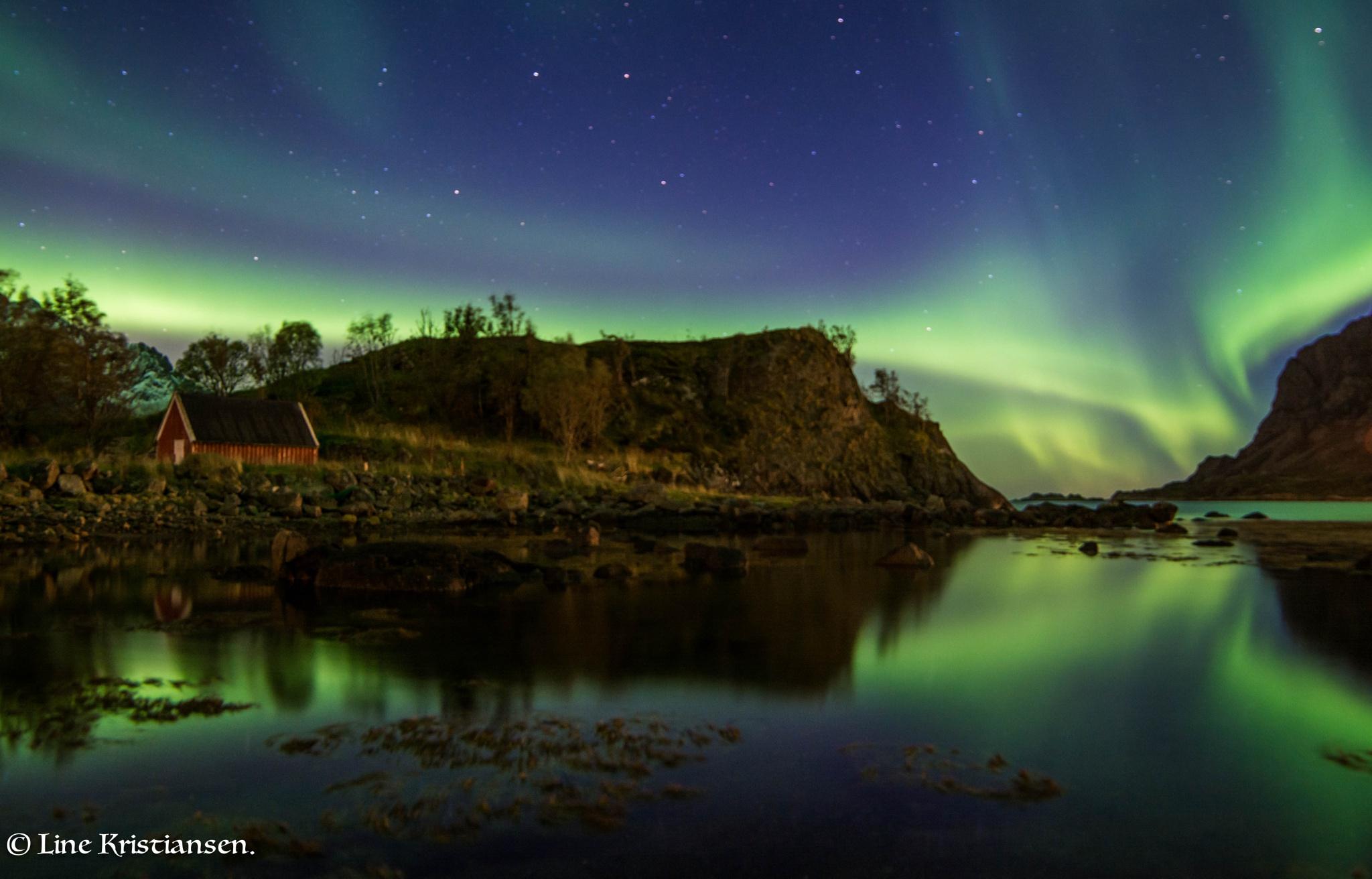 Northern Lights by line.kristiansen3