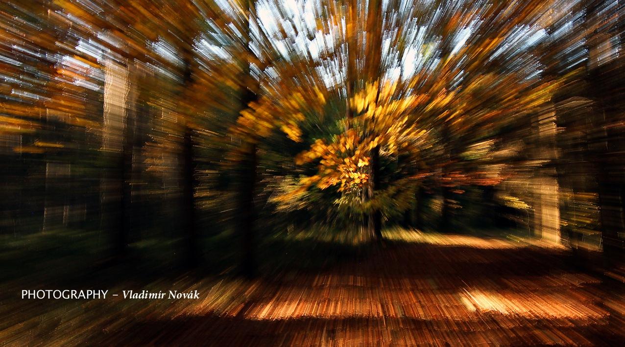 Autumn - 13 by Vladimír Novák