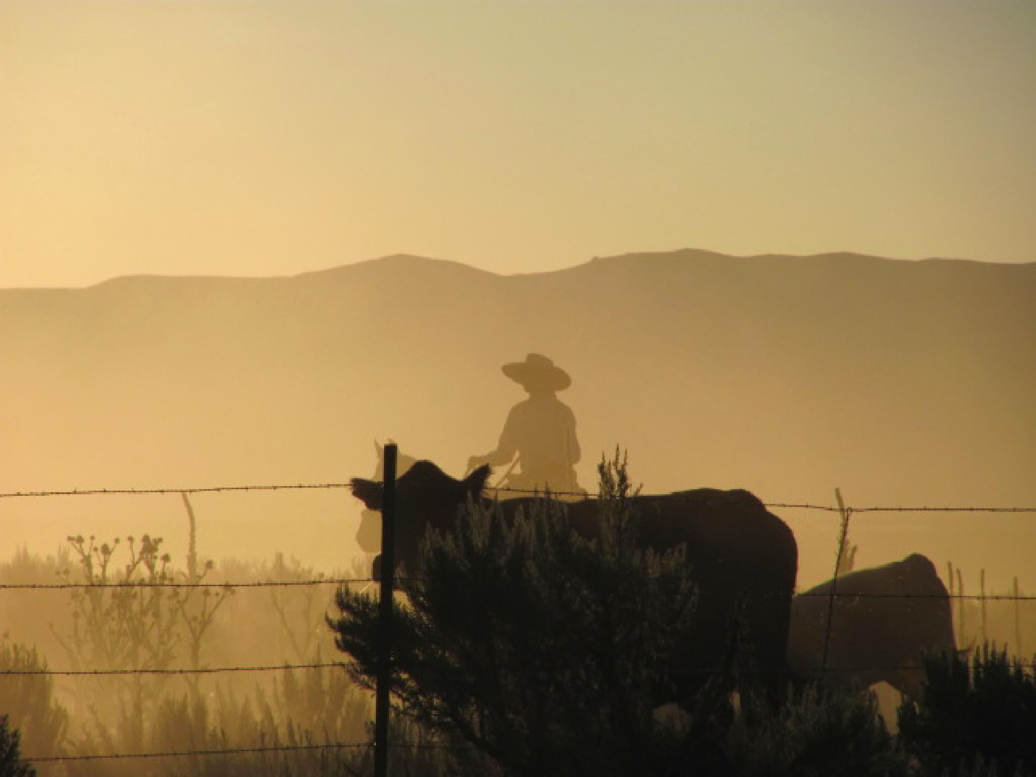 Dusty Mornin' by peteyfoozer1