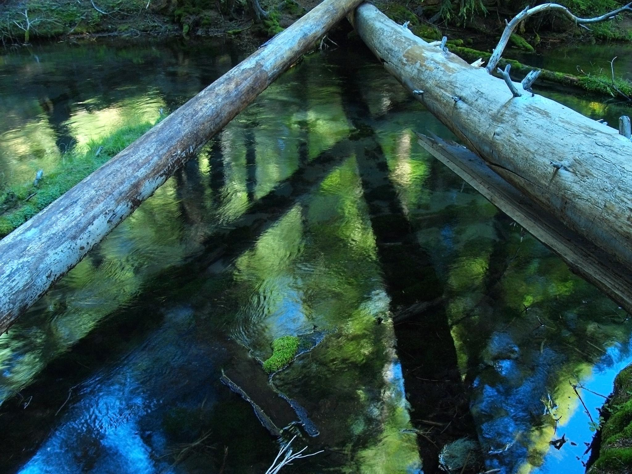 Clear water reflections by goddessteri211