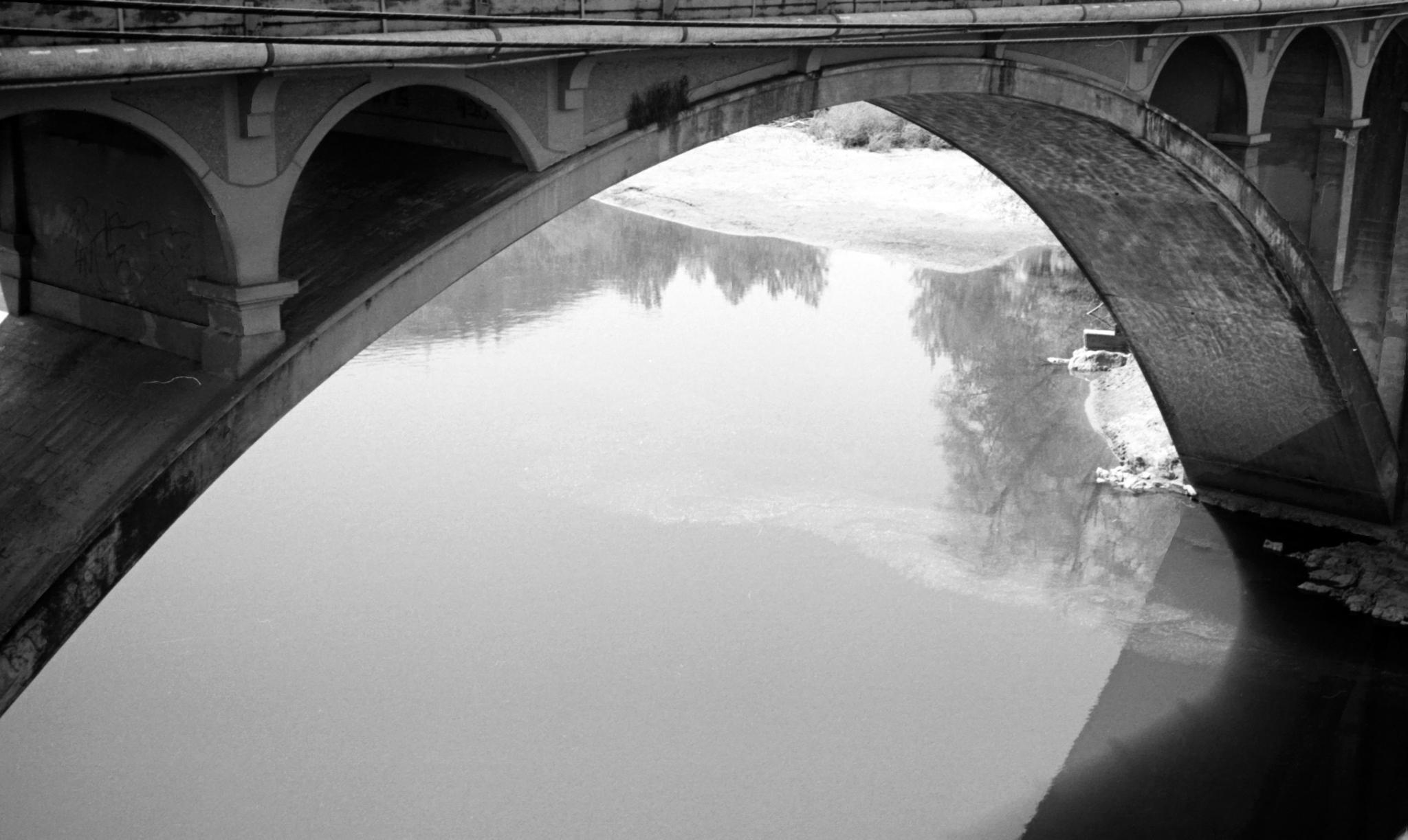 The rivers bridge by goddessteri211