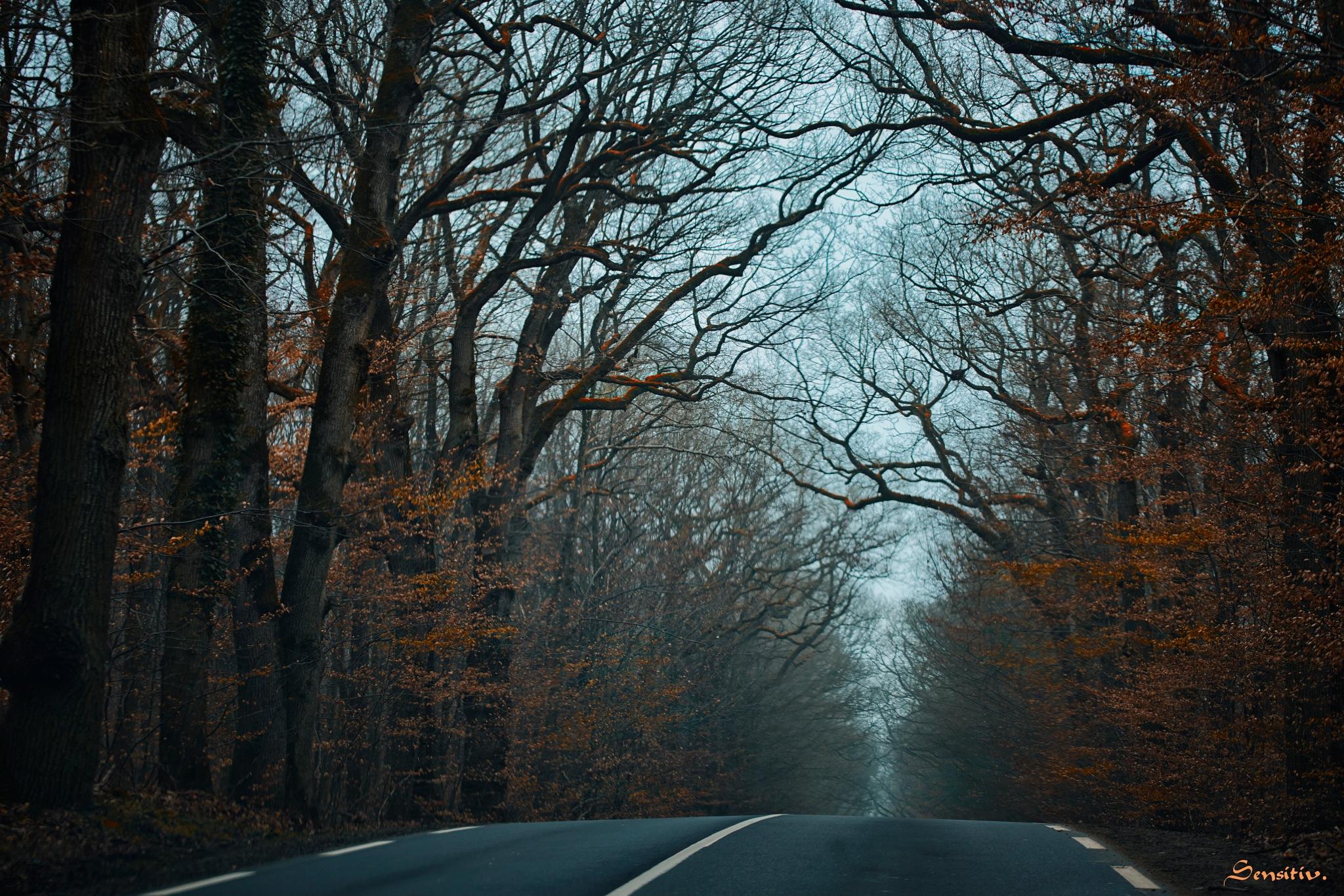 prendre la route s'évader encore ... by Camille Sensitiv