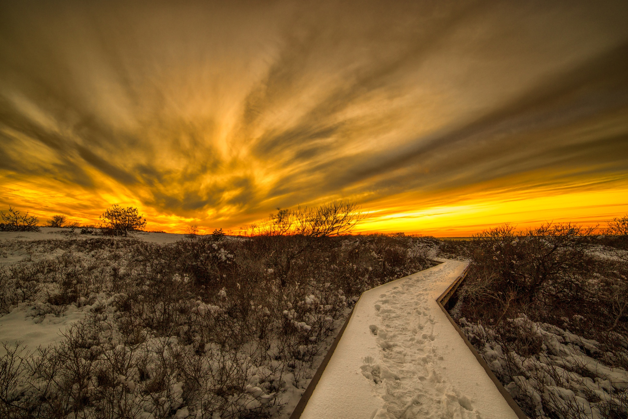 Winter Sunset Walk by Dominick Chiuchiolo