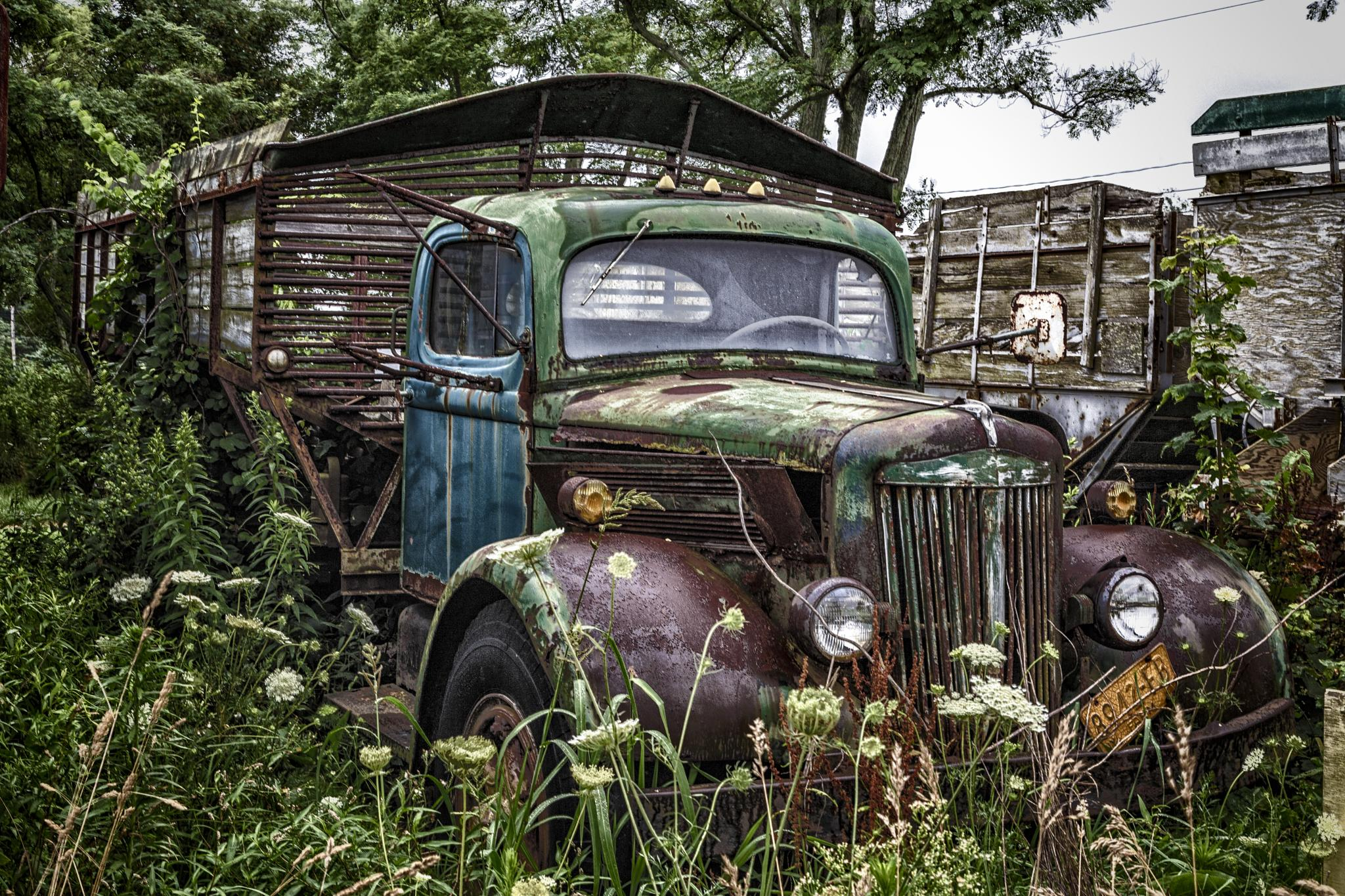This old Truck by Dominick Chiuchiolo