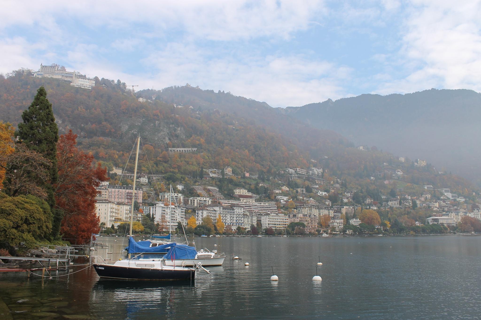 Montreux by Janez Štros