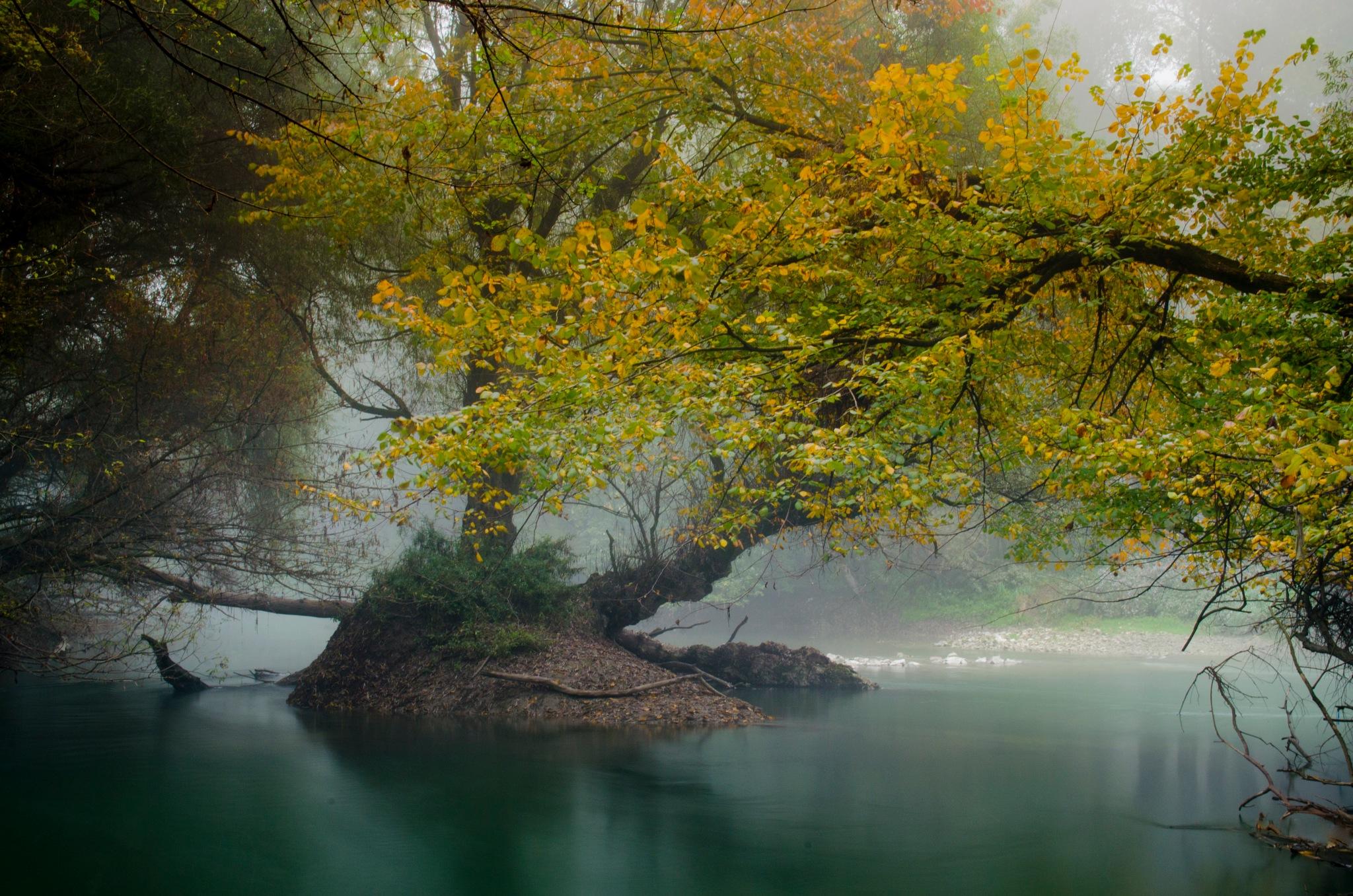 Autumn calm by Kovacs Krisztian