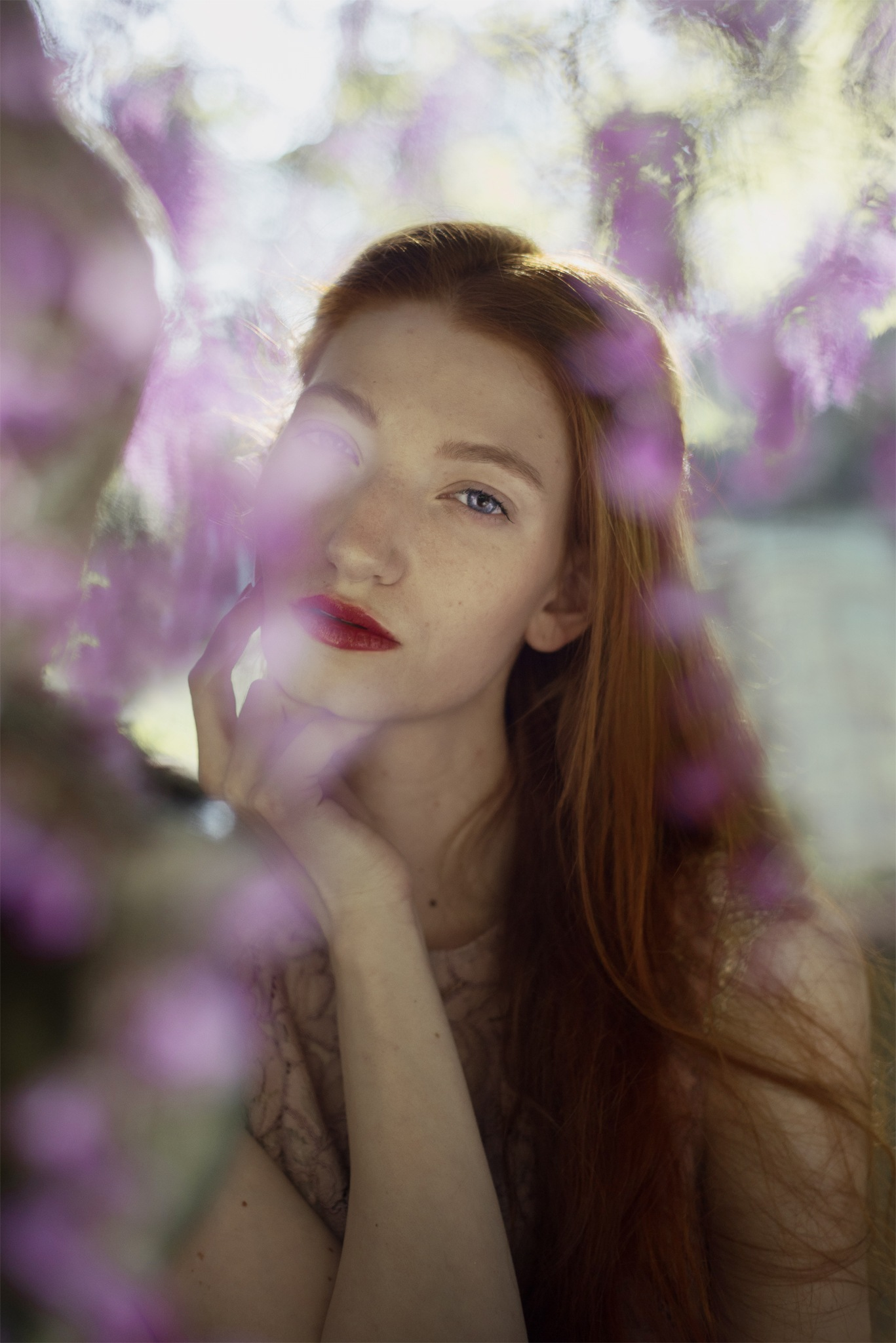 the secret souls of wisteria by federica nardese photography