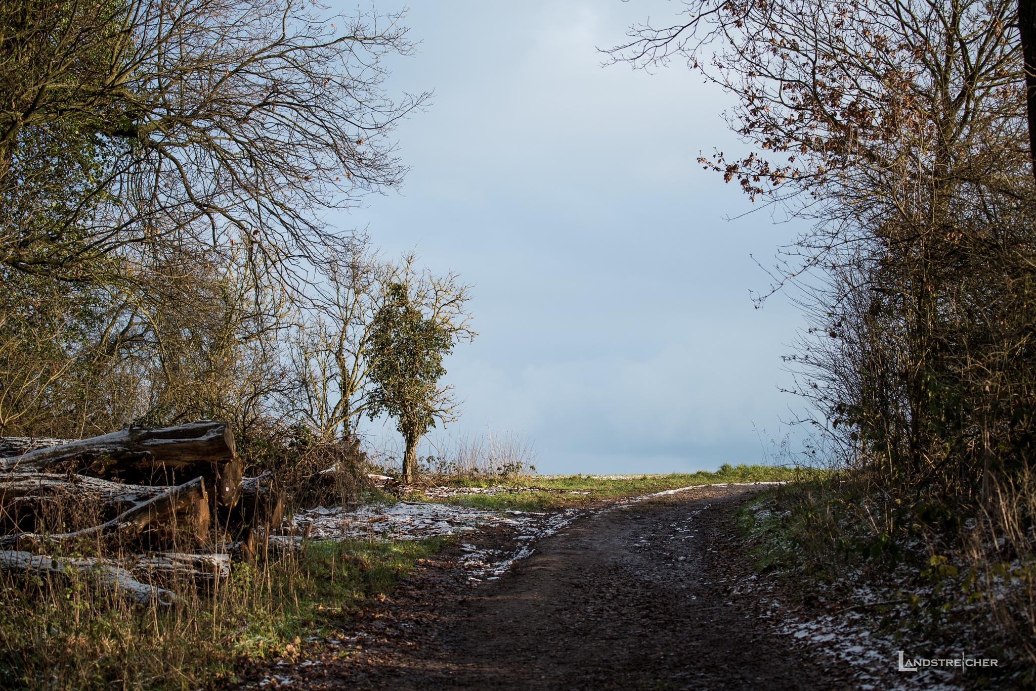Exit by Landstreicher