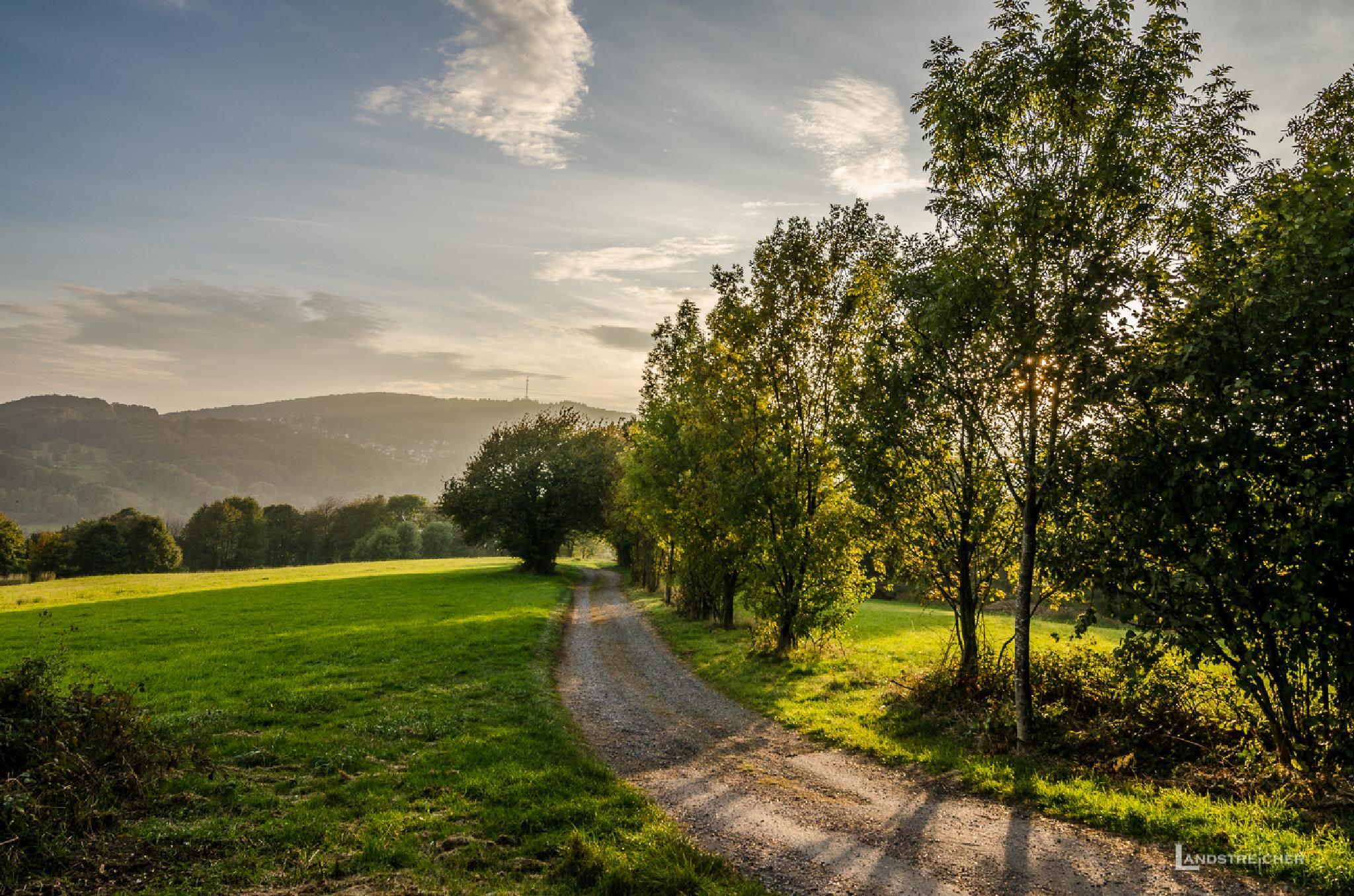 Odenwaldpfad by Landstreicher