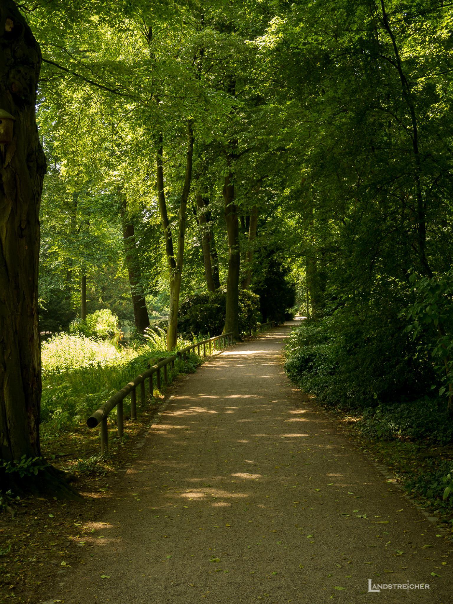Dieser Weg wird (k)ein leichter sein by Landstreicher