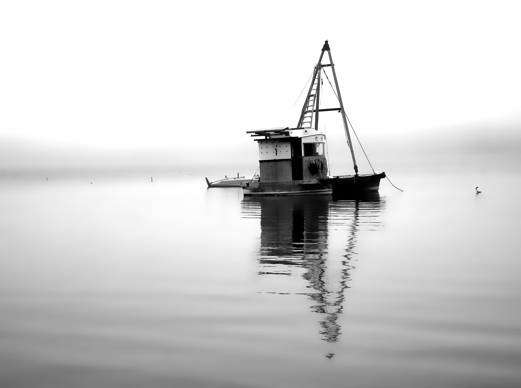 utility by David J DeCenzo