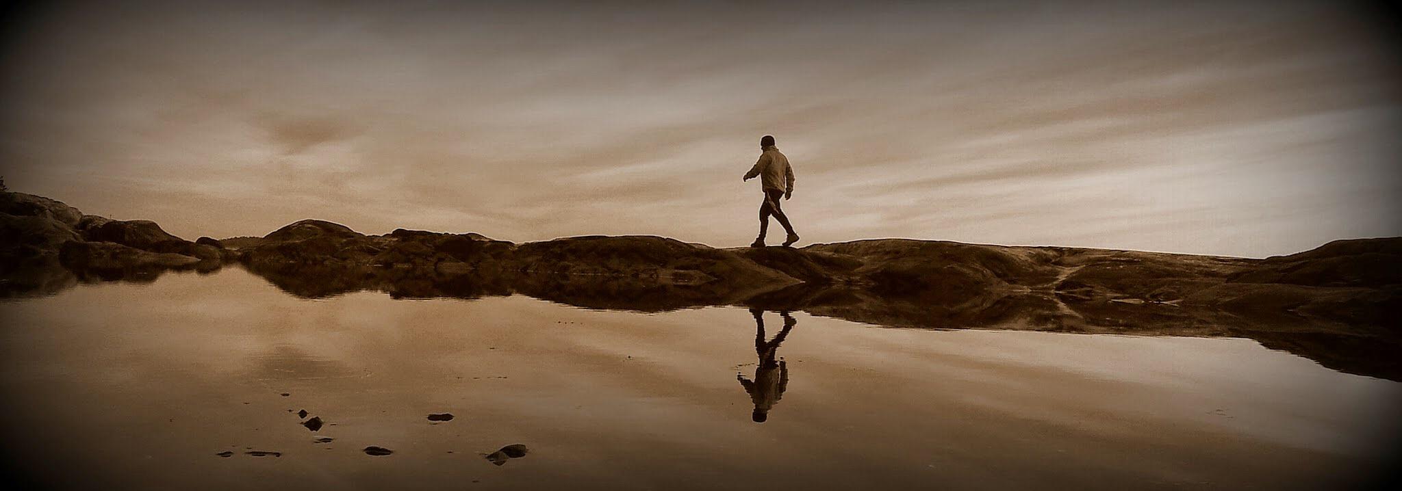 The walker by Bjorn Heidenstrom