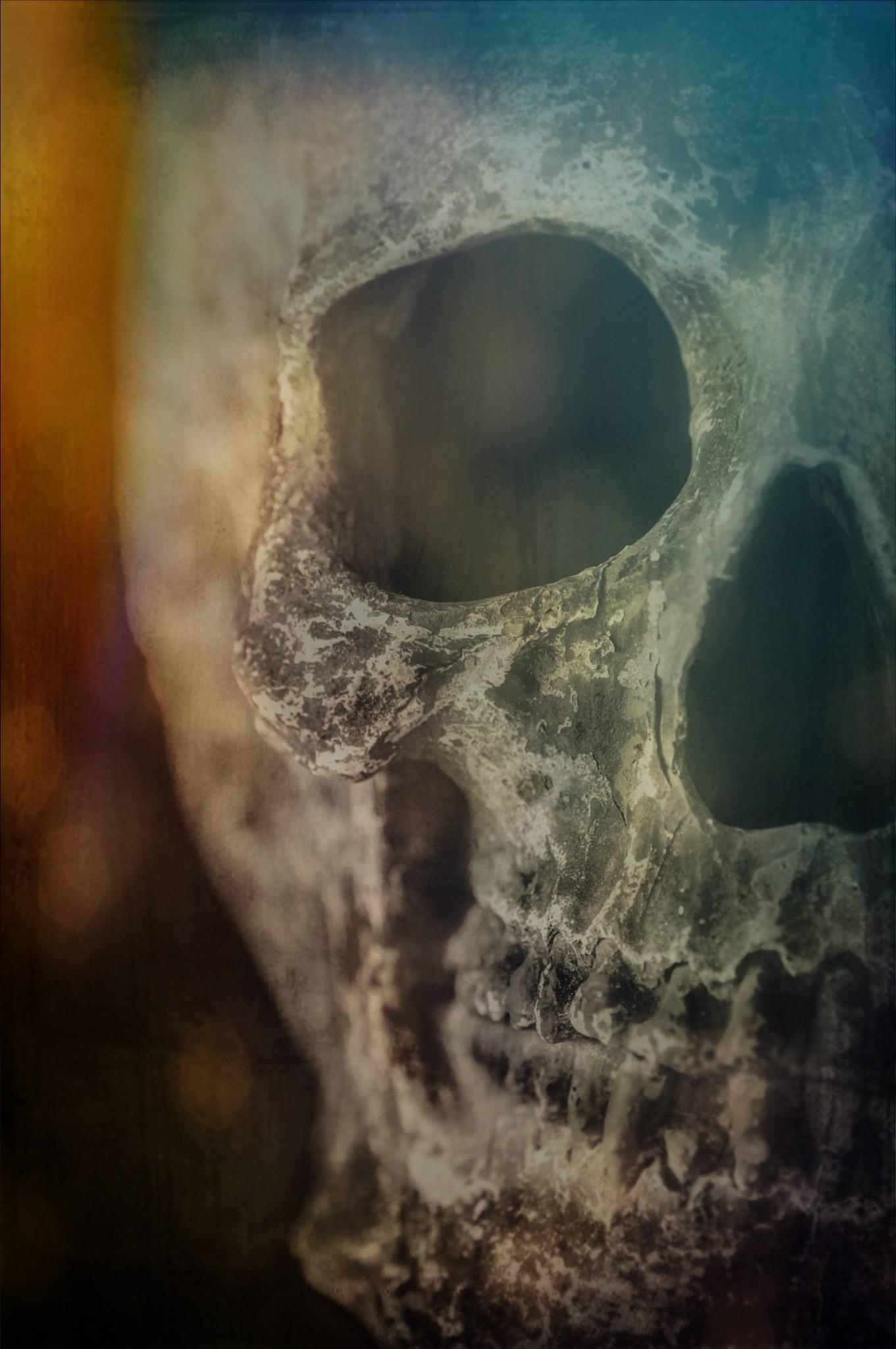 Evil dead!! by sylviecorriveau