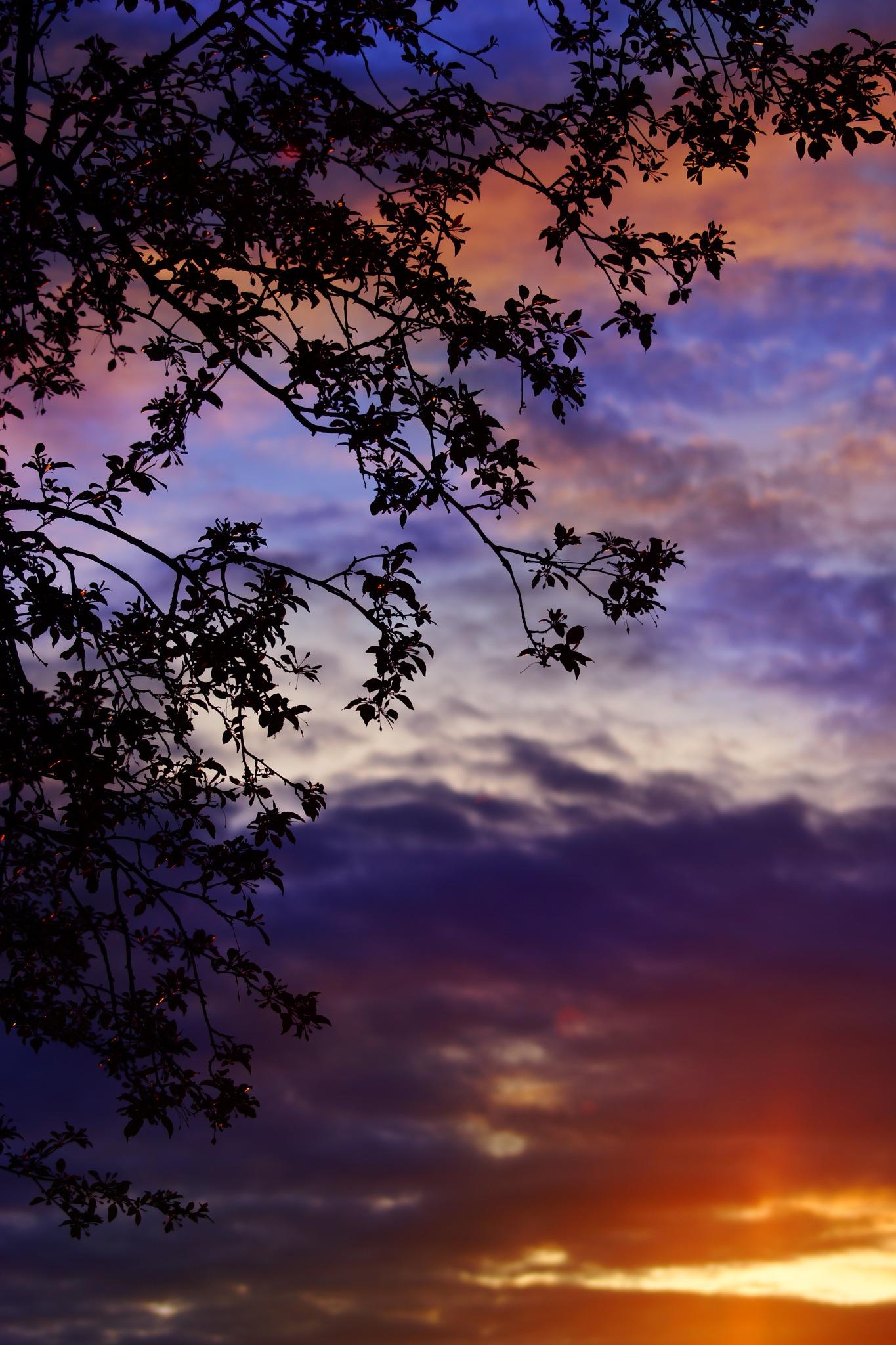 Awe sunset by sylviecorriveau