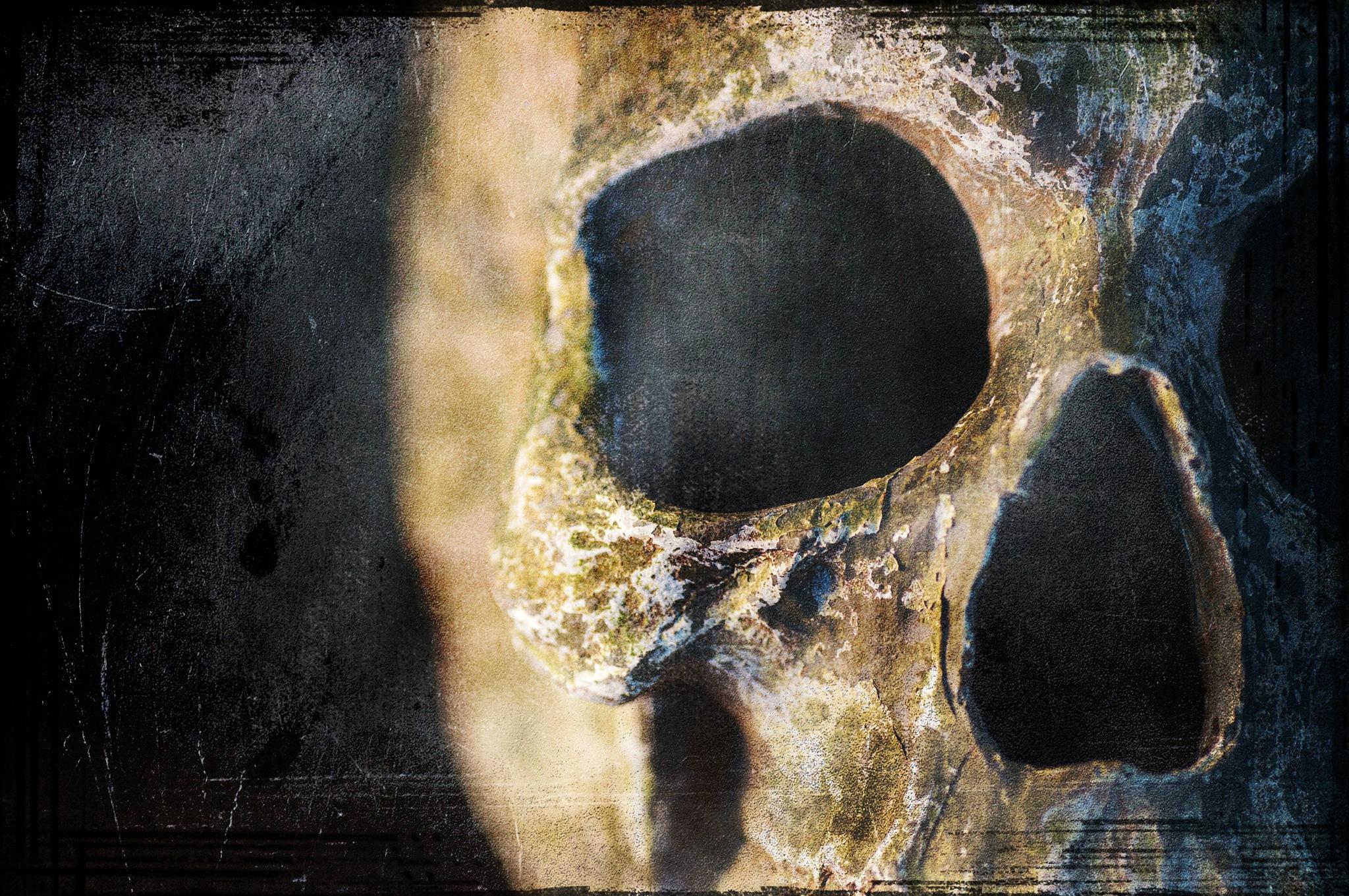 Terrific skull by sylviecorriveau