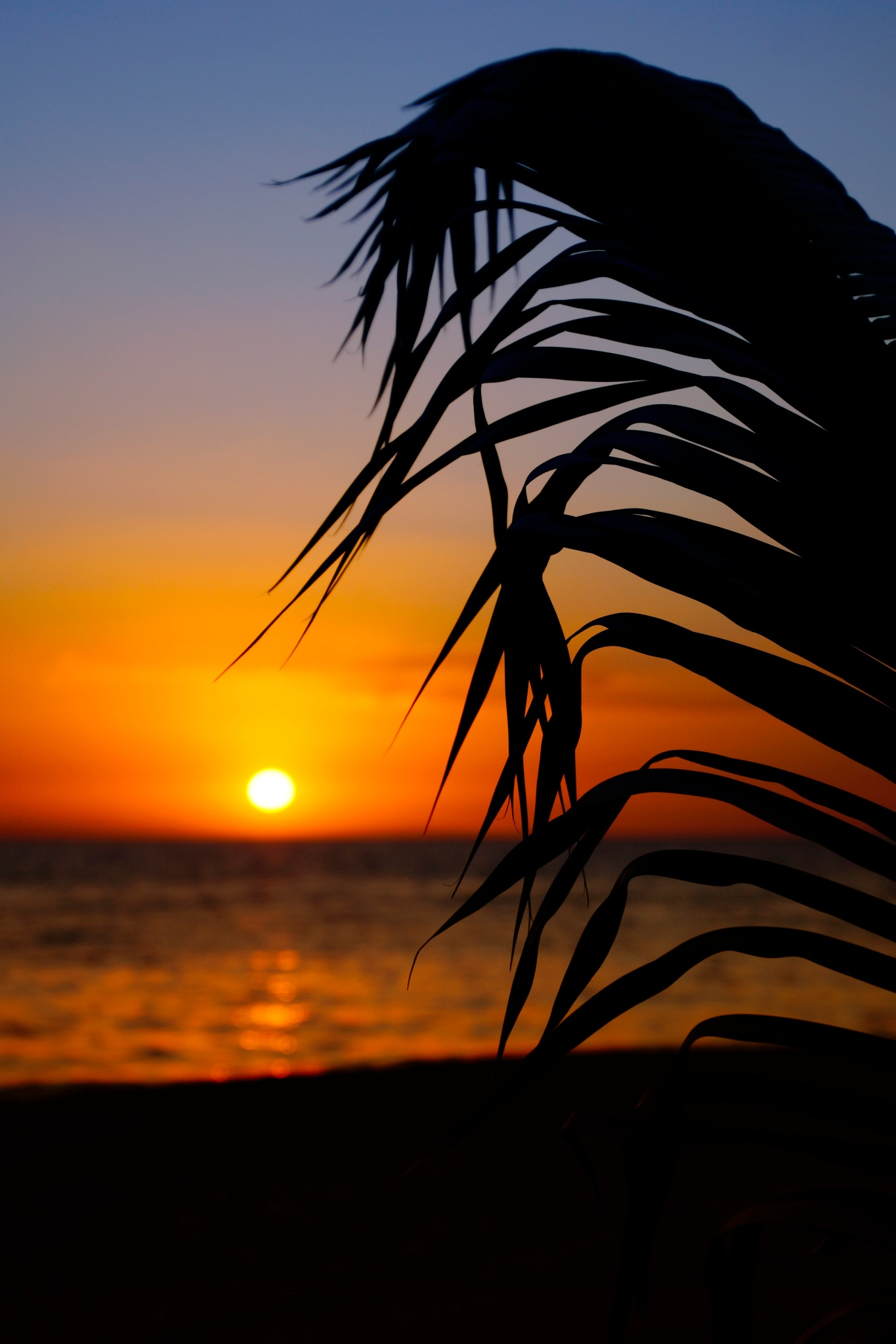 Sunset Haiti by sylviecorriveau