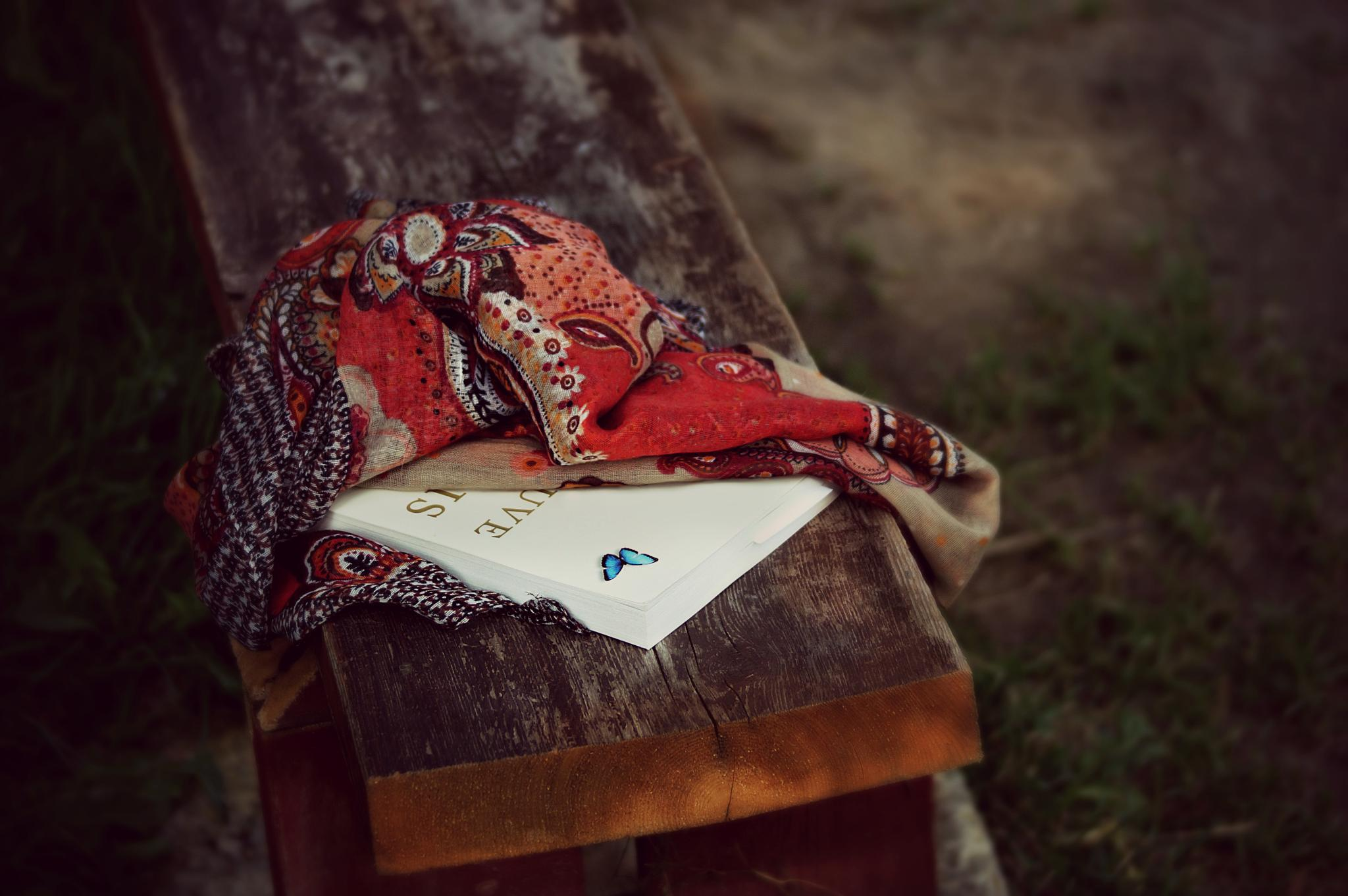 La lectrice by sylviecorriveau