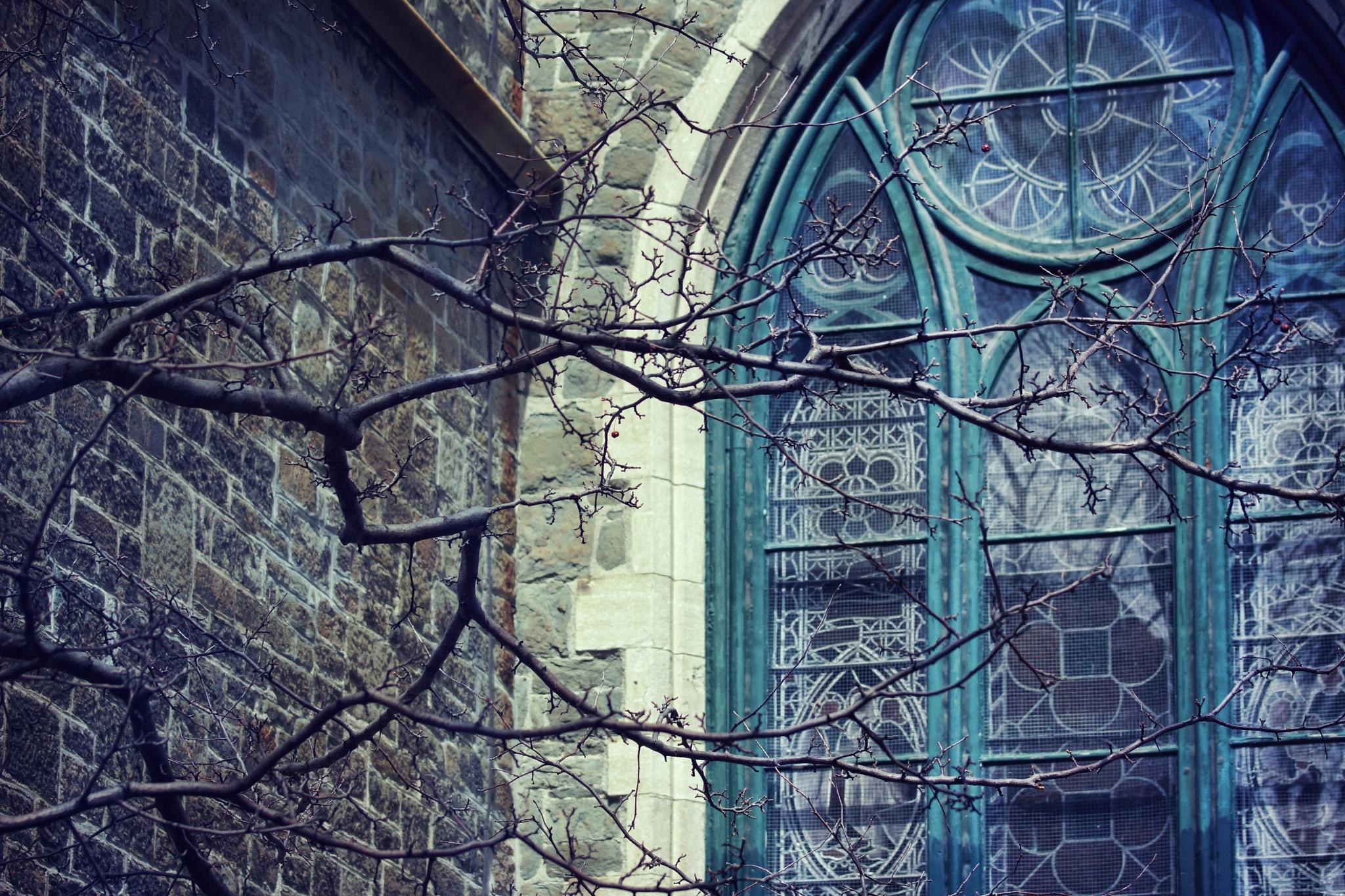 La cathédrale by sylviecorriveau