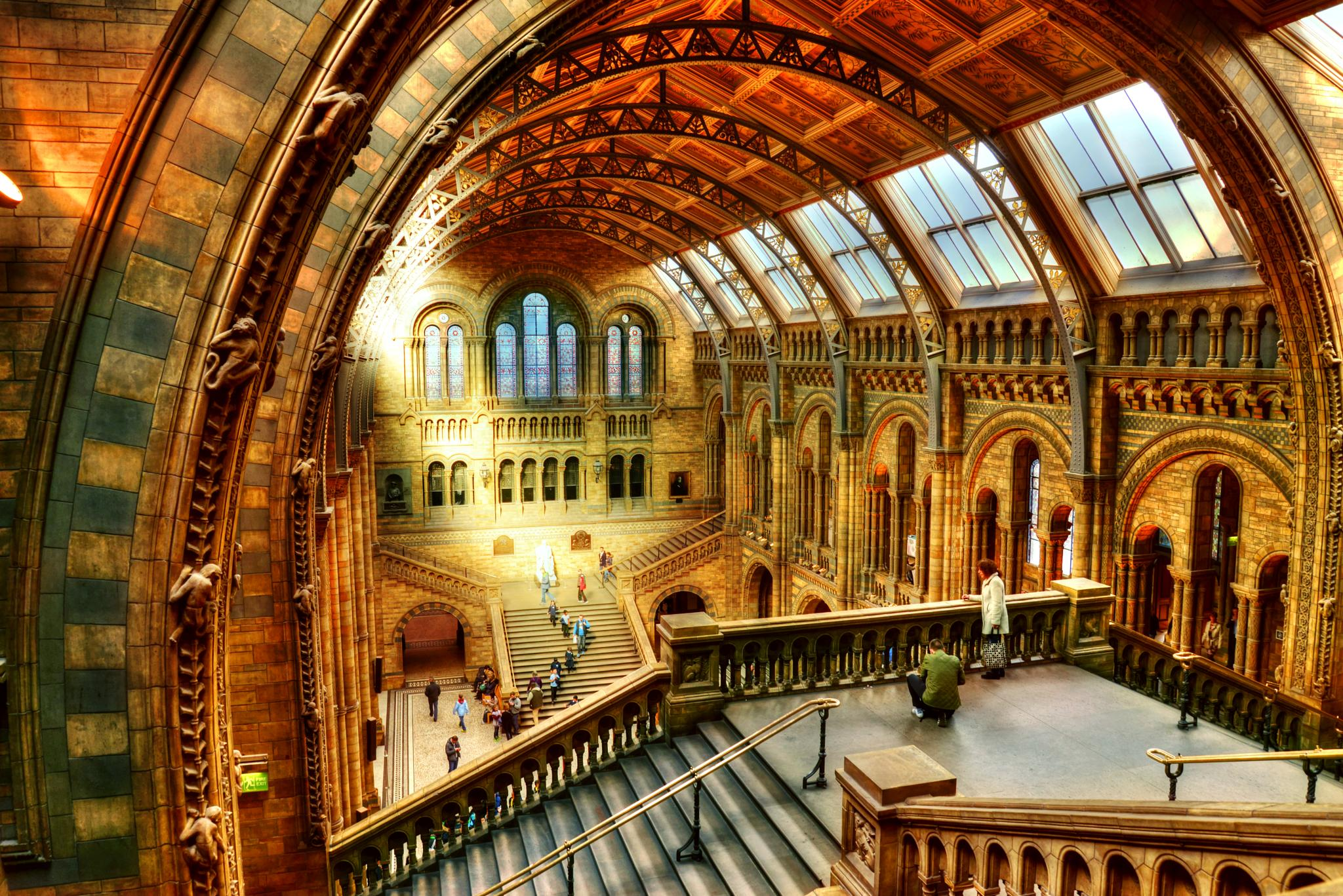 Natural History Museum by Piotr Owczarzak