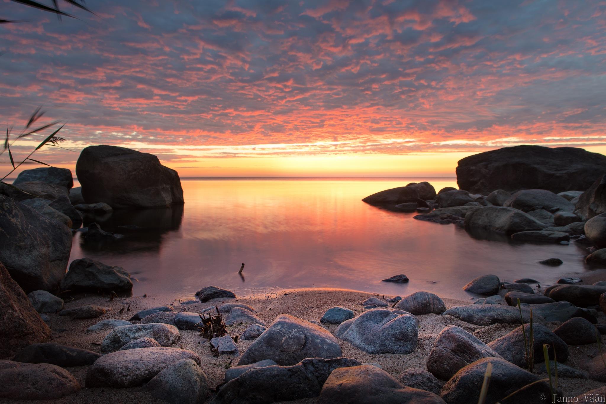 Primeval sea by Janno Vään