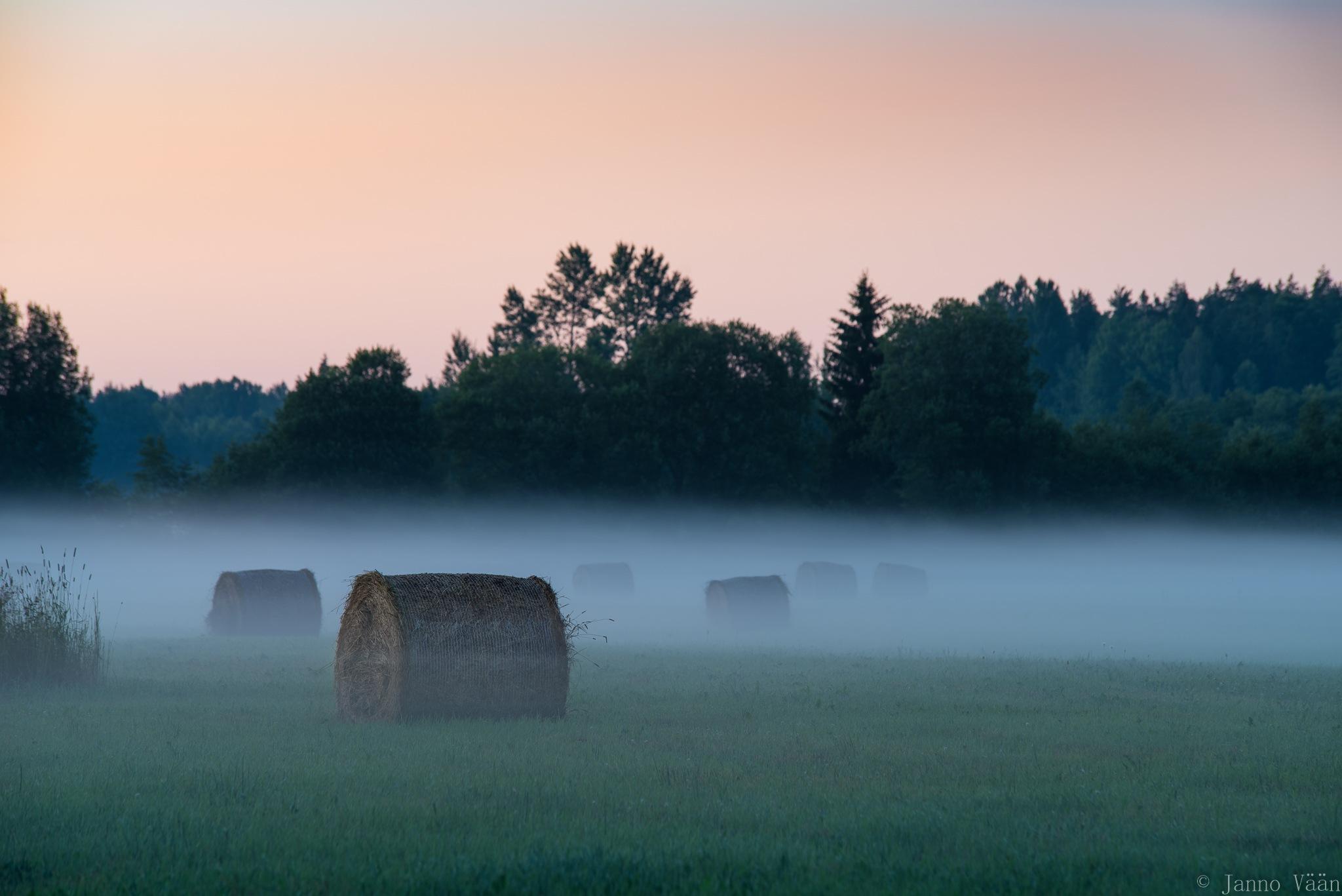 Misty evening by Janno Vään