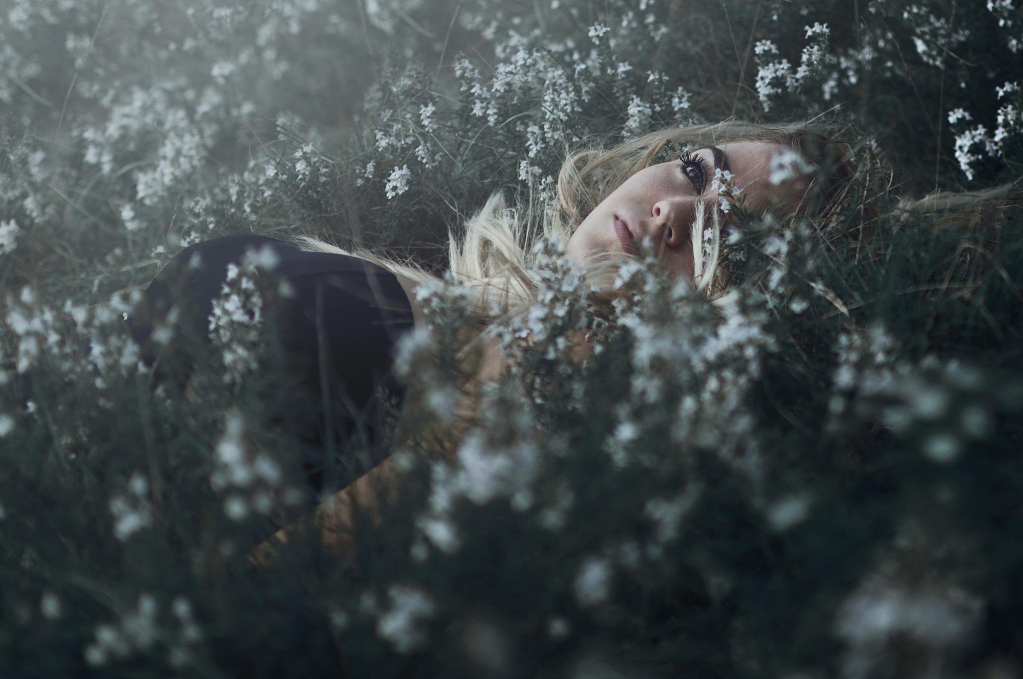 36/52 Dreaming by Federico Sciuca