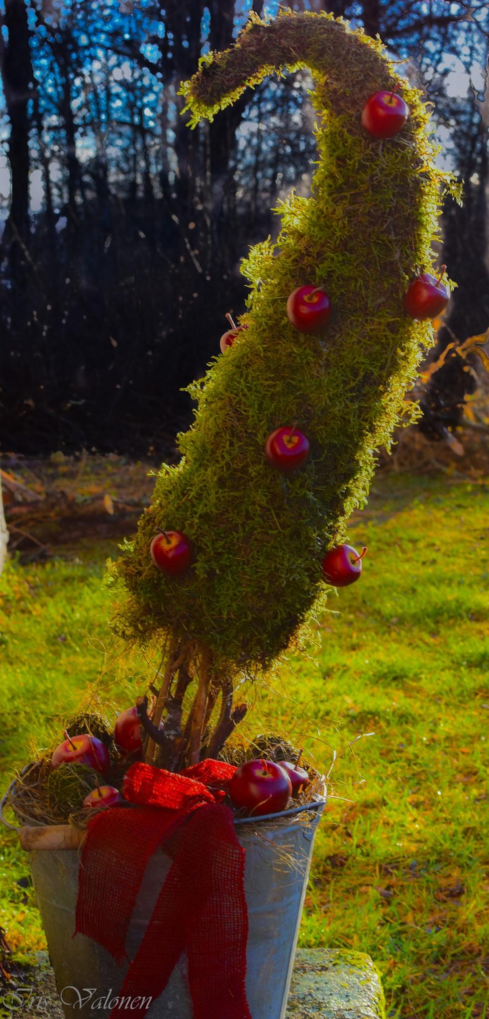 Punaiset omenat by Iris V