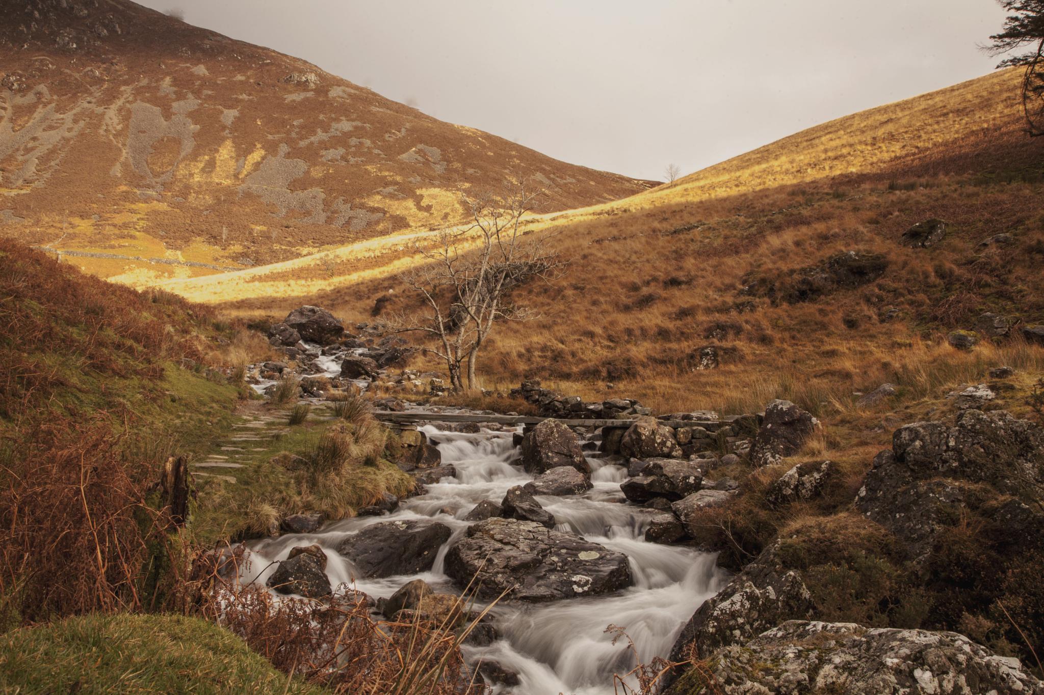 Snowdonia National Park  by jgolba