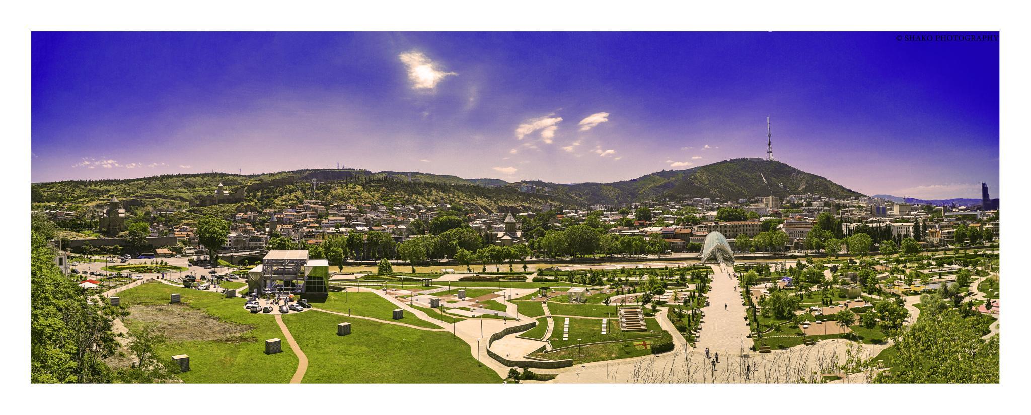 Tbilisi by Shalva Mamukashvili