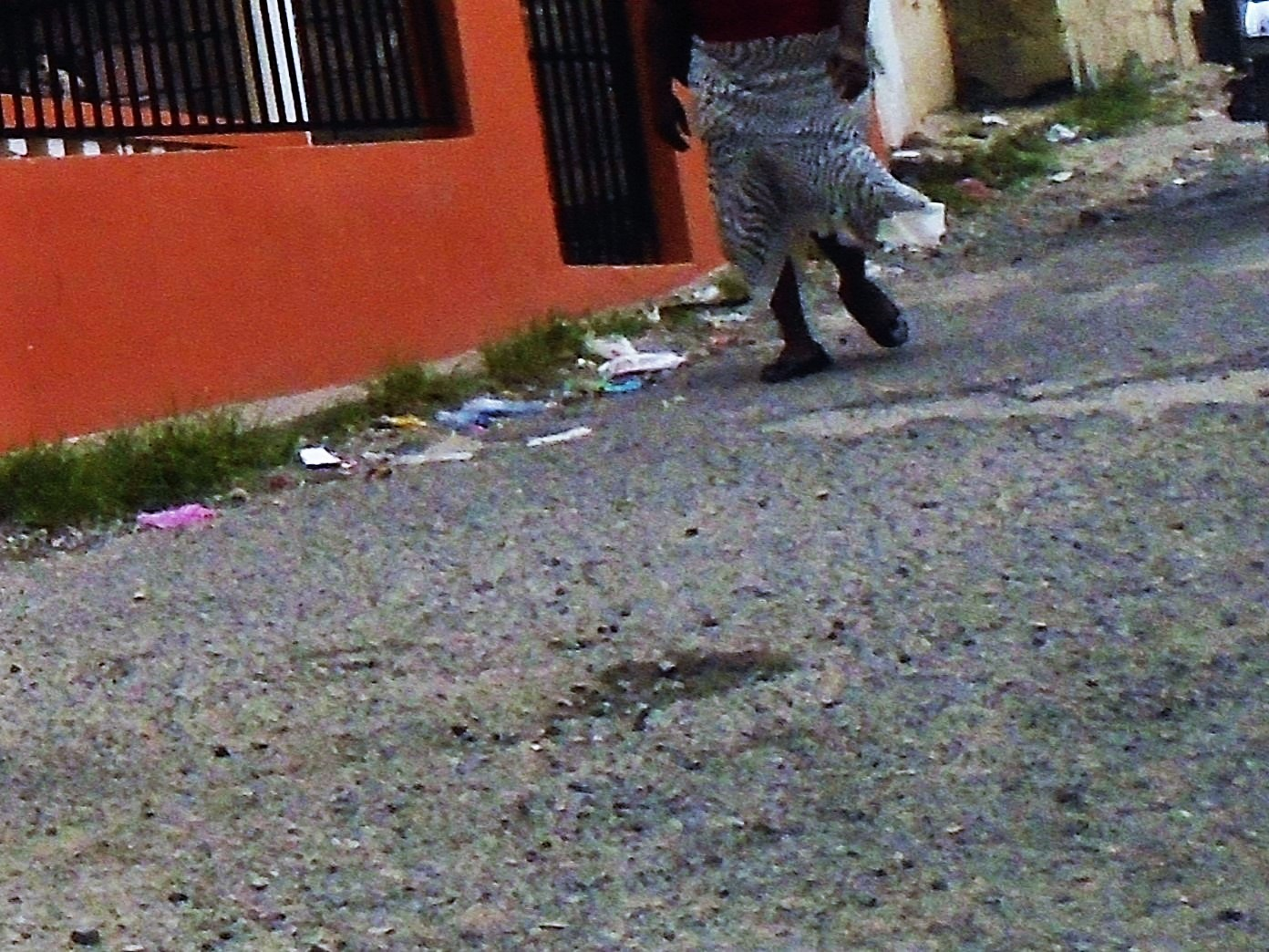 shot in Santiago Dominican Republic by robert butts