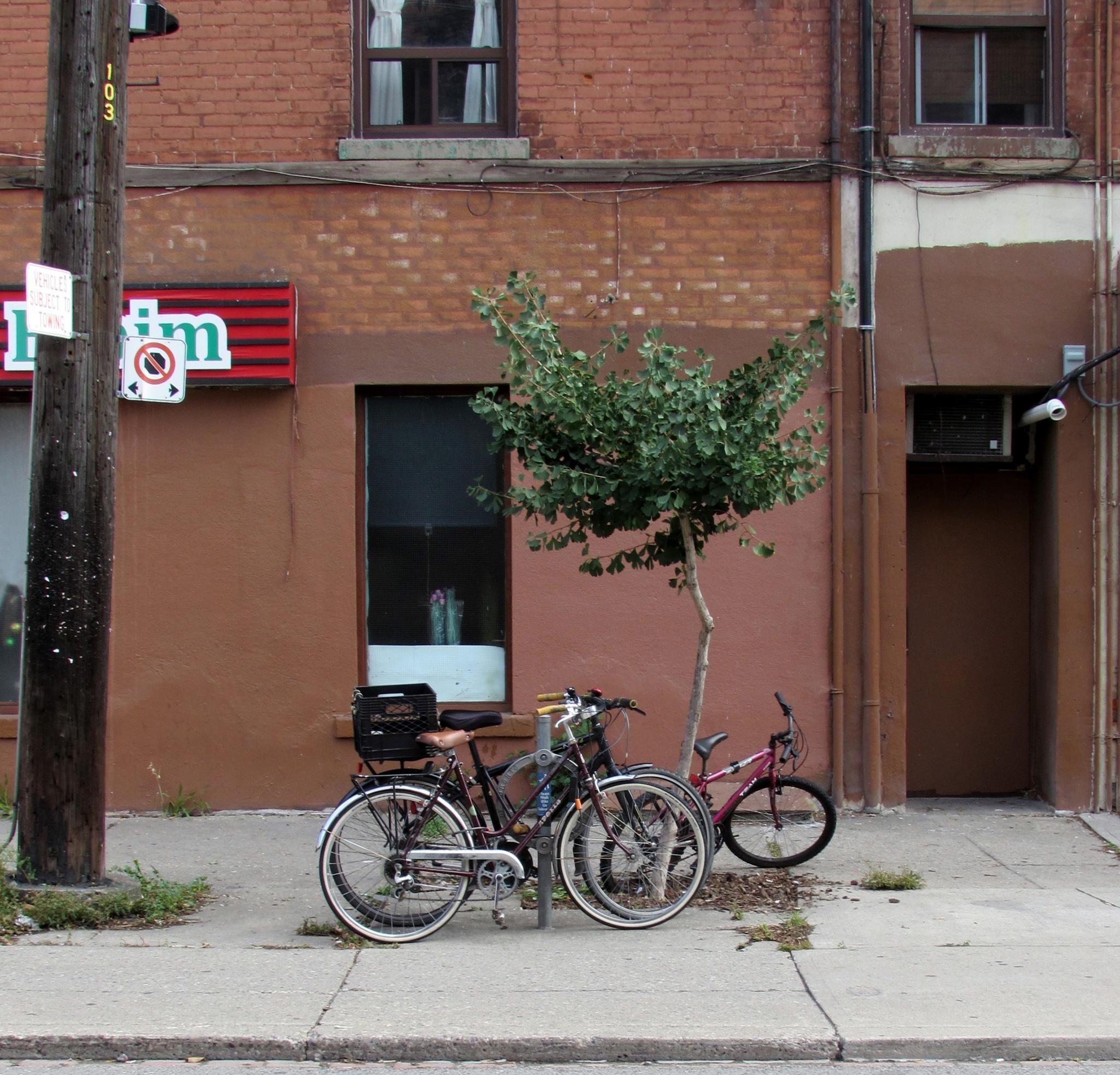 bikes by robert butts