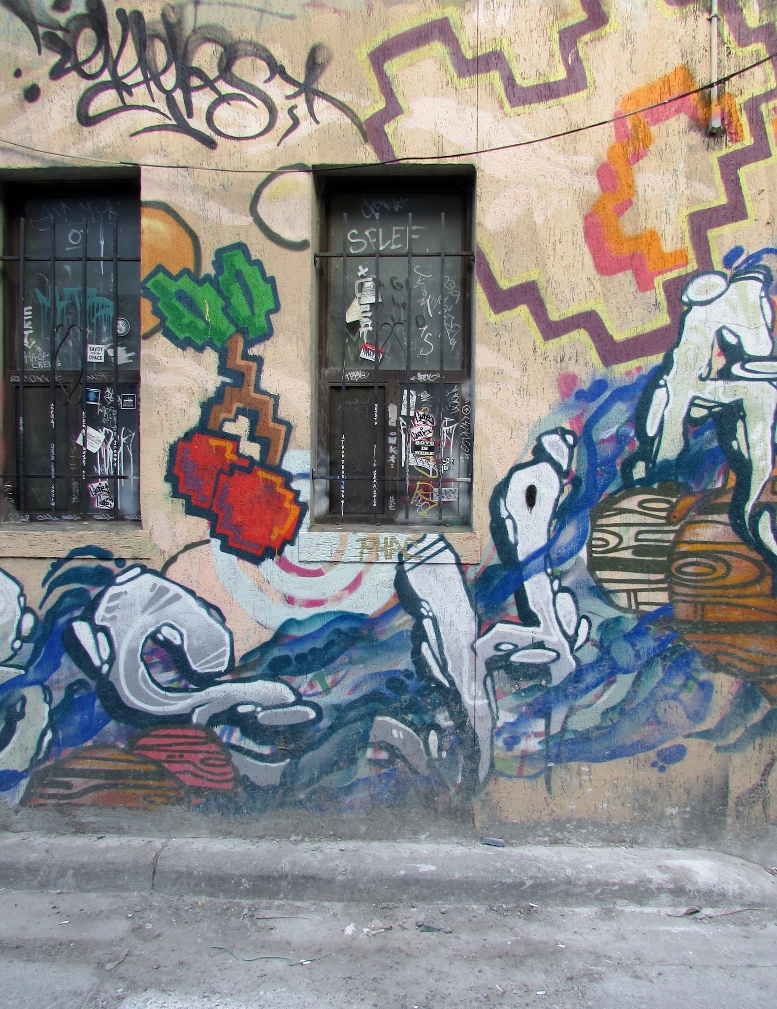 no graffiti by robert butts