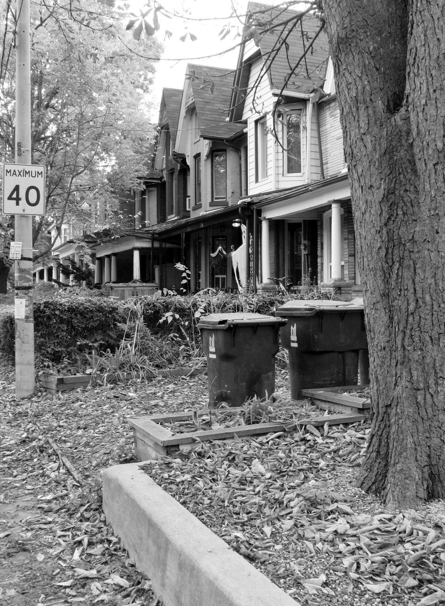street o by robert butts