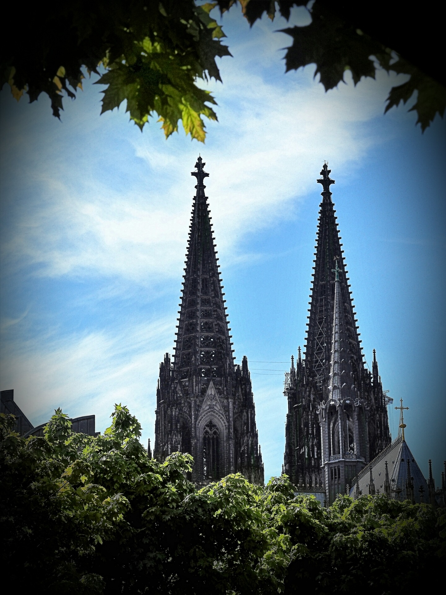 Cologne cathedral by Brigitte Bohlscheid