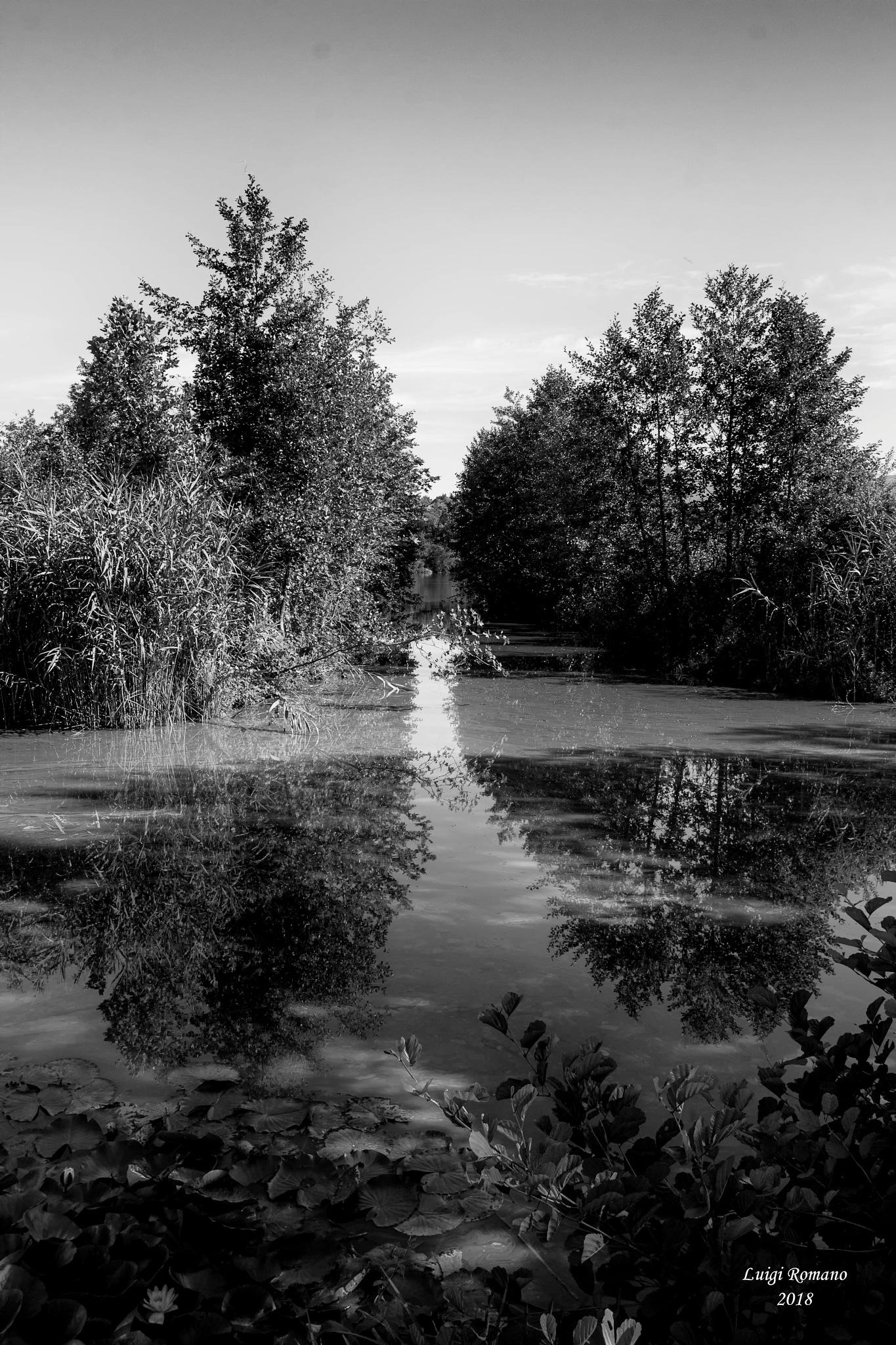 Black and white reflections in the Sartirana lake by Luigi Romano