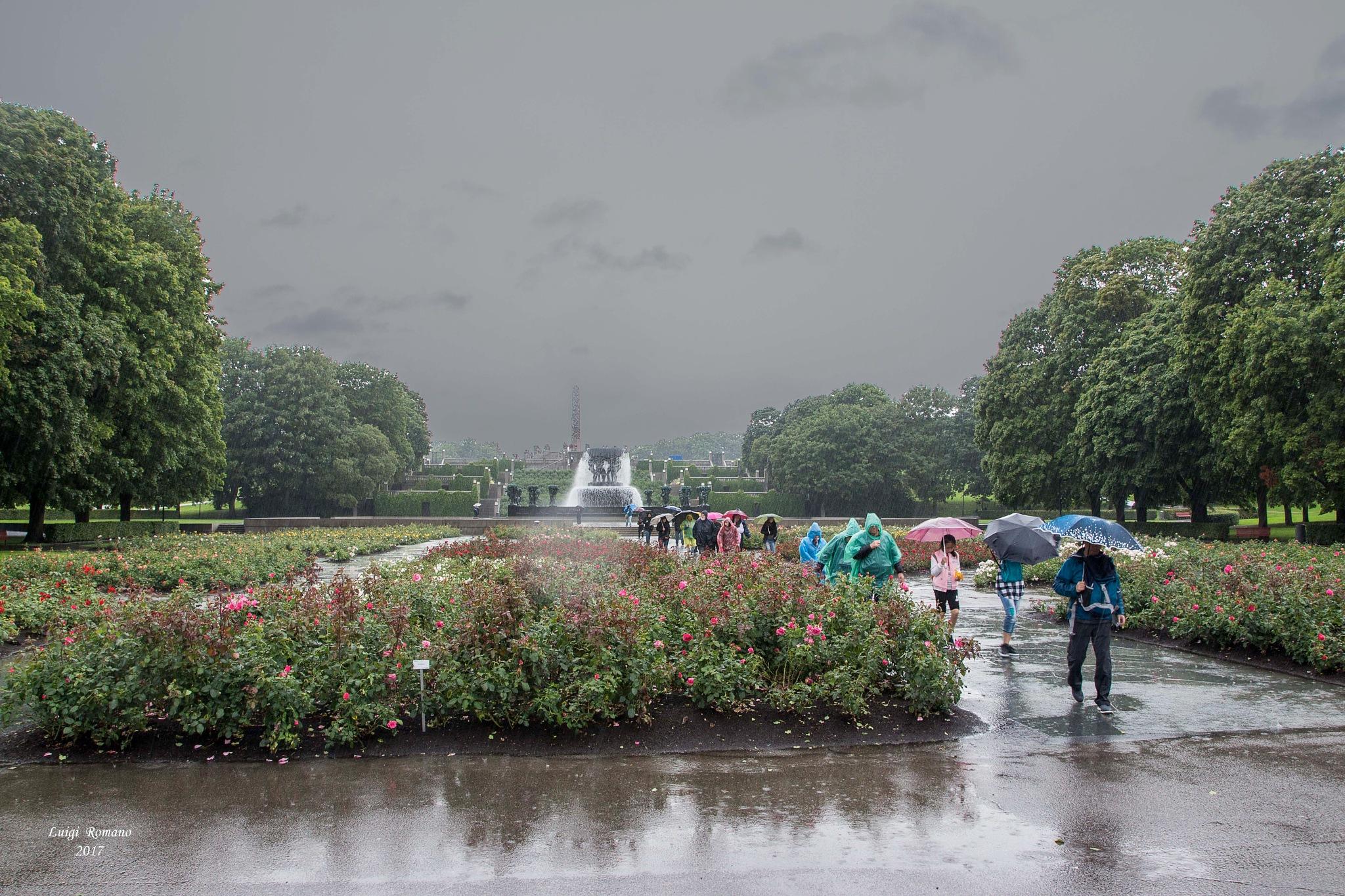Visit the Vigeland Park in heavy rain by Luigi Romano