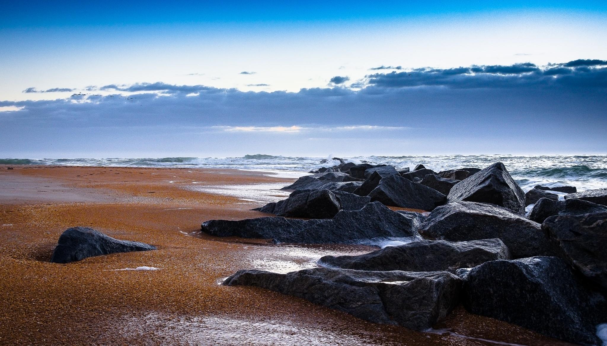 Shoreline by Paul Coleman