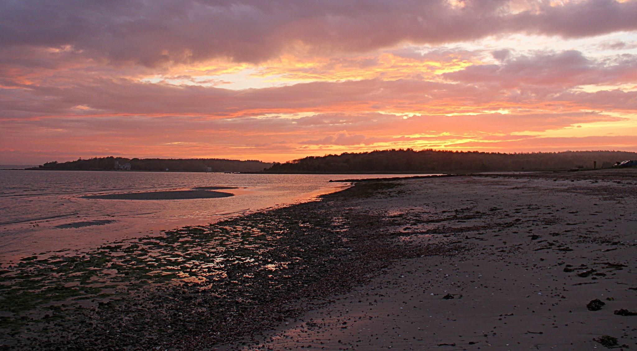 Sunset by susanne carlton