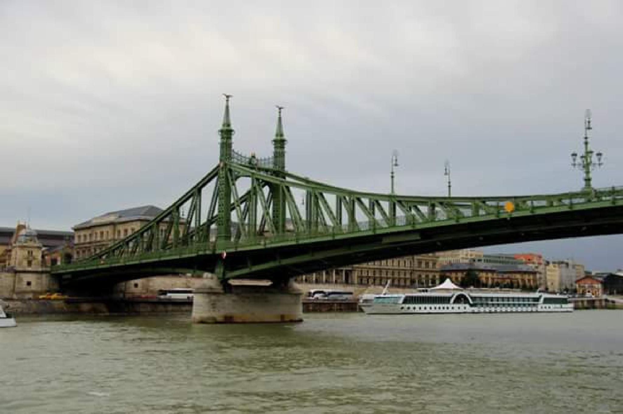 the freedom bridge by thierrylorenzo