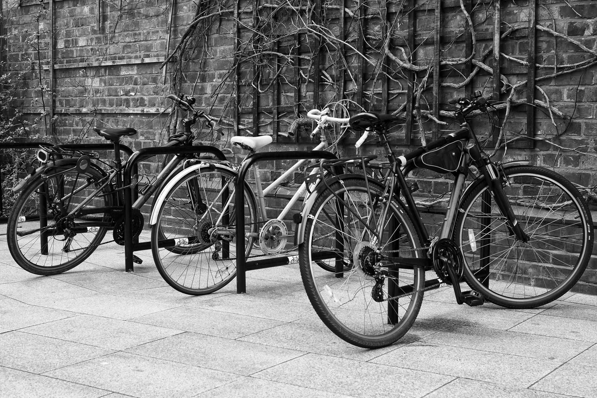 Bike Park by Martin Beecroft