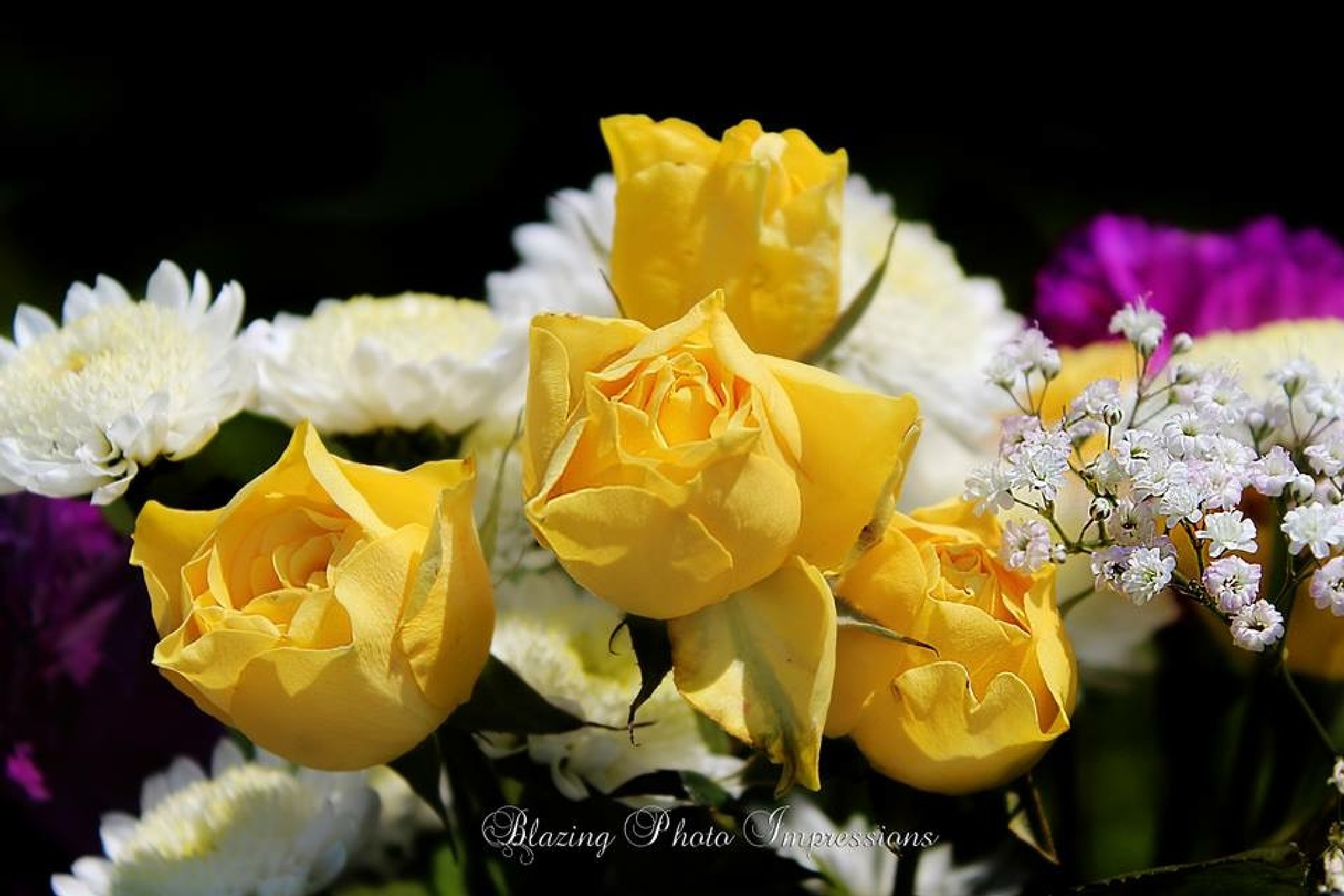 Yellow roses by Nanehi Moon