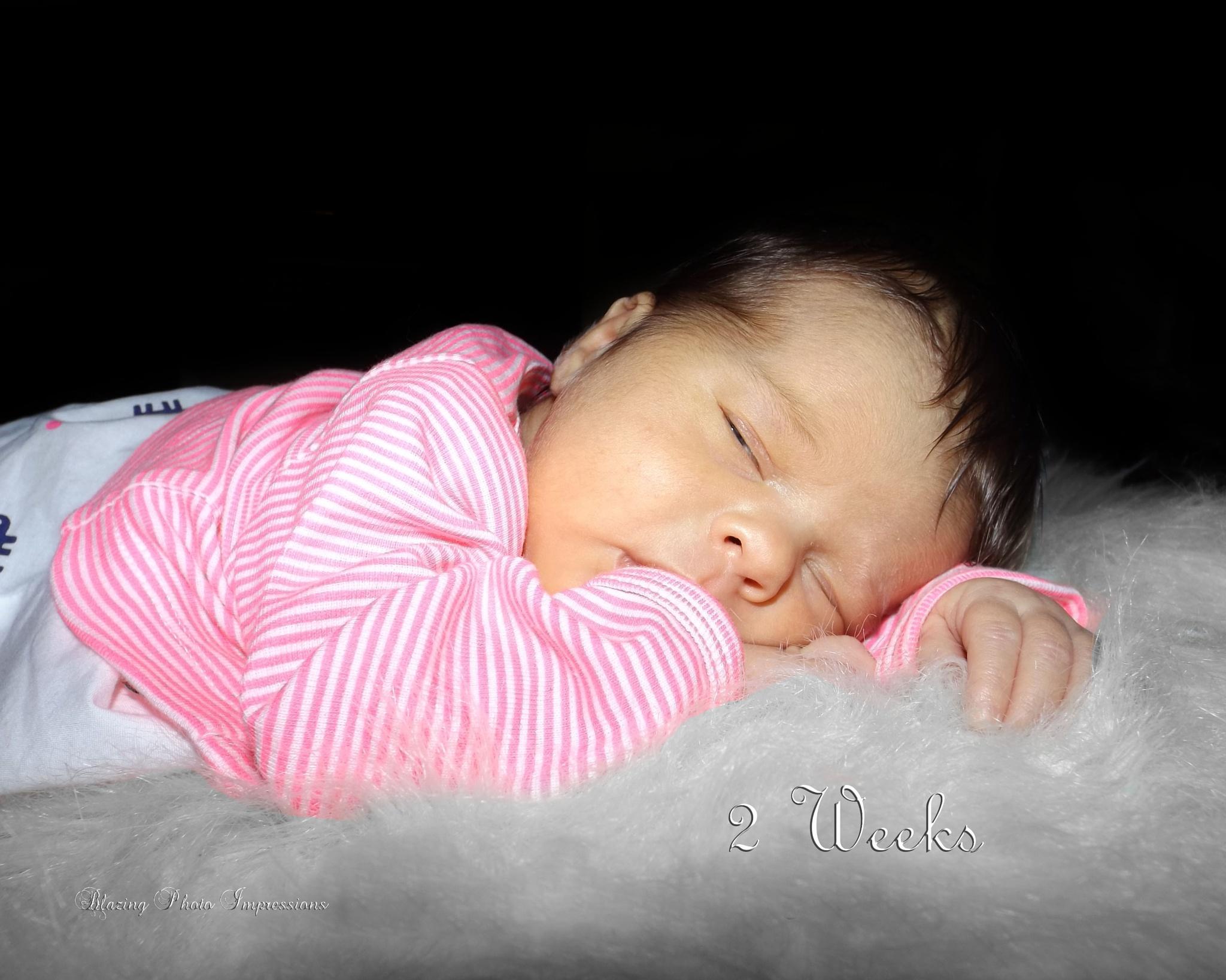 2 weeks old by Nanehi Moon