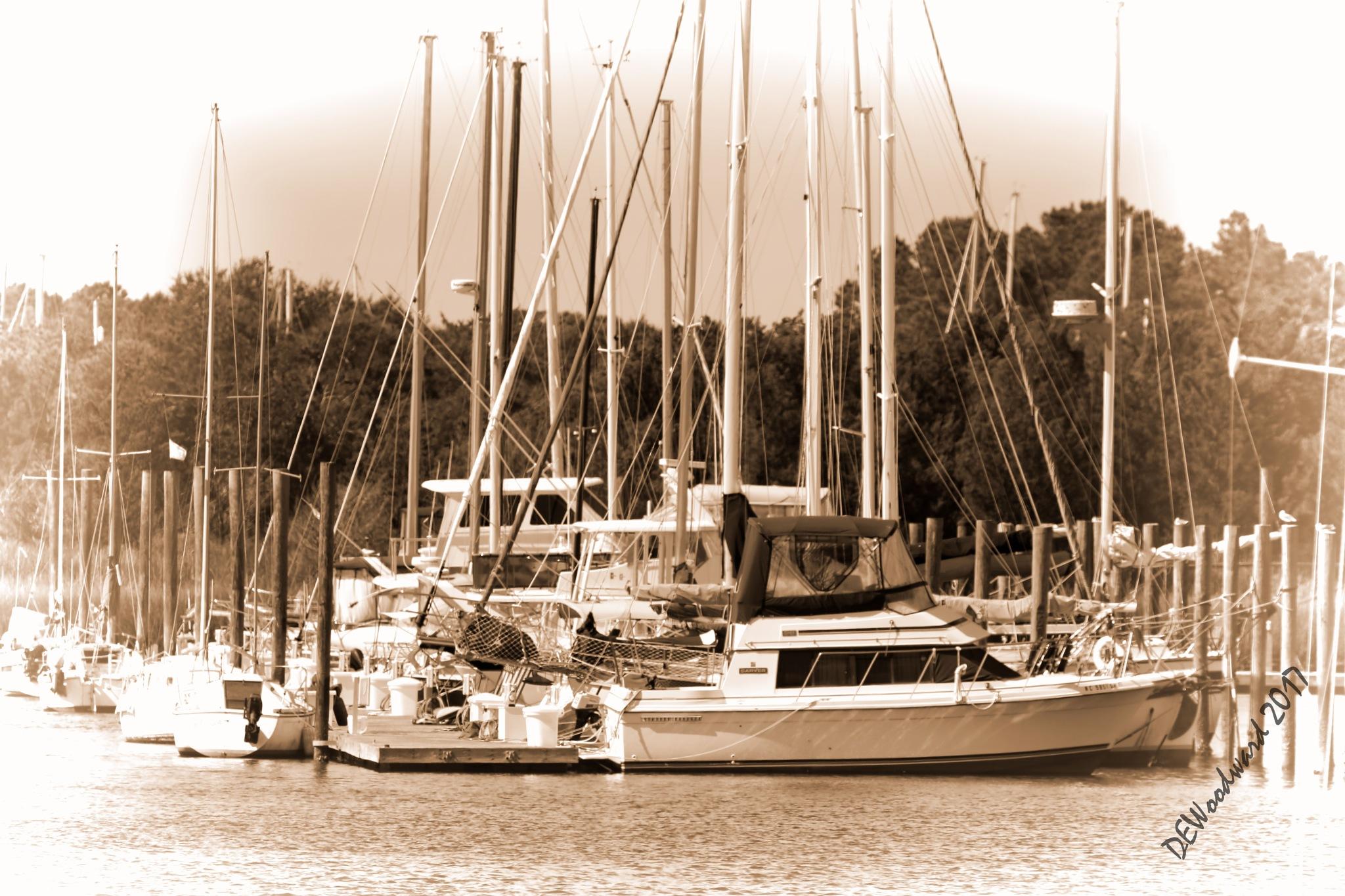 Southport N.C. Marina by dewoodward