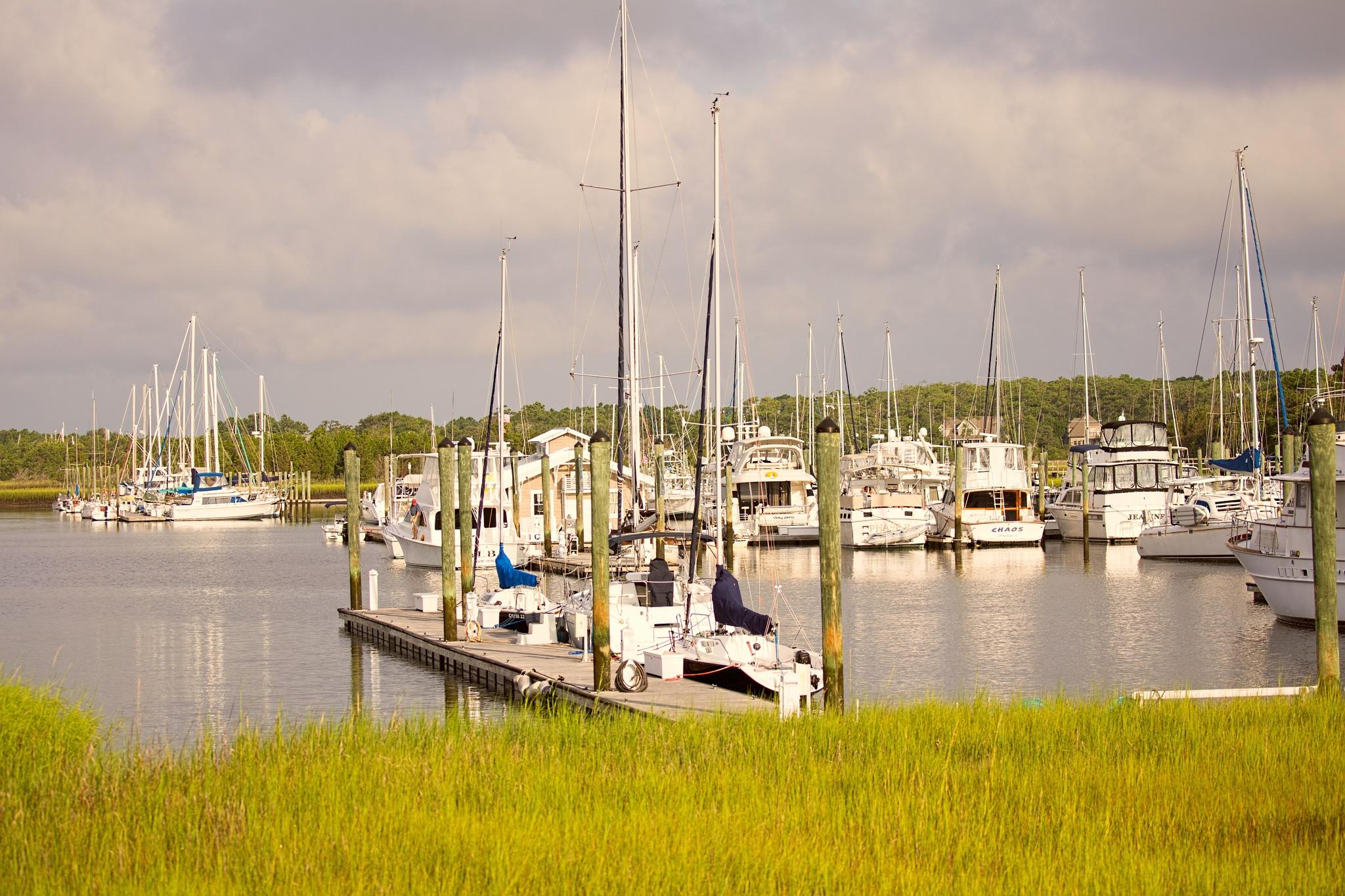 Harbor by dewoodward