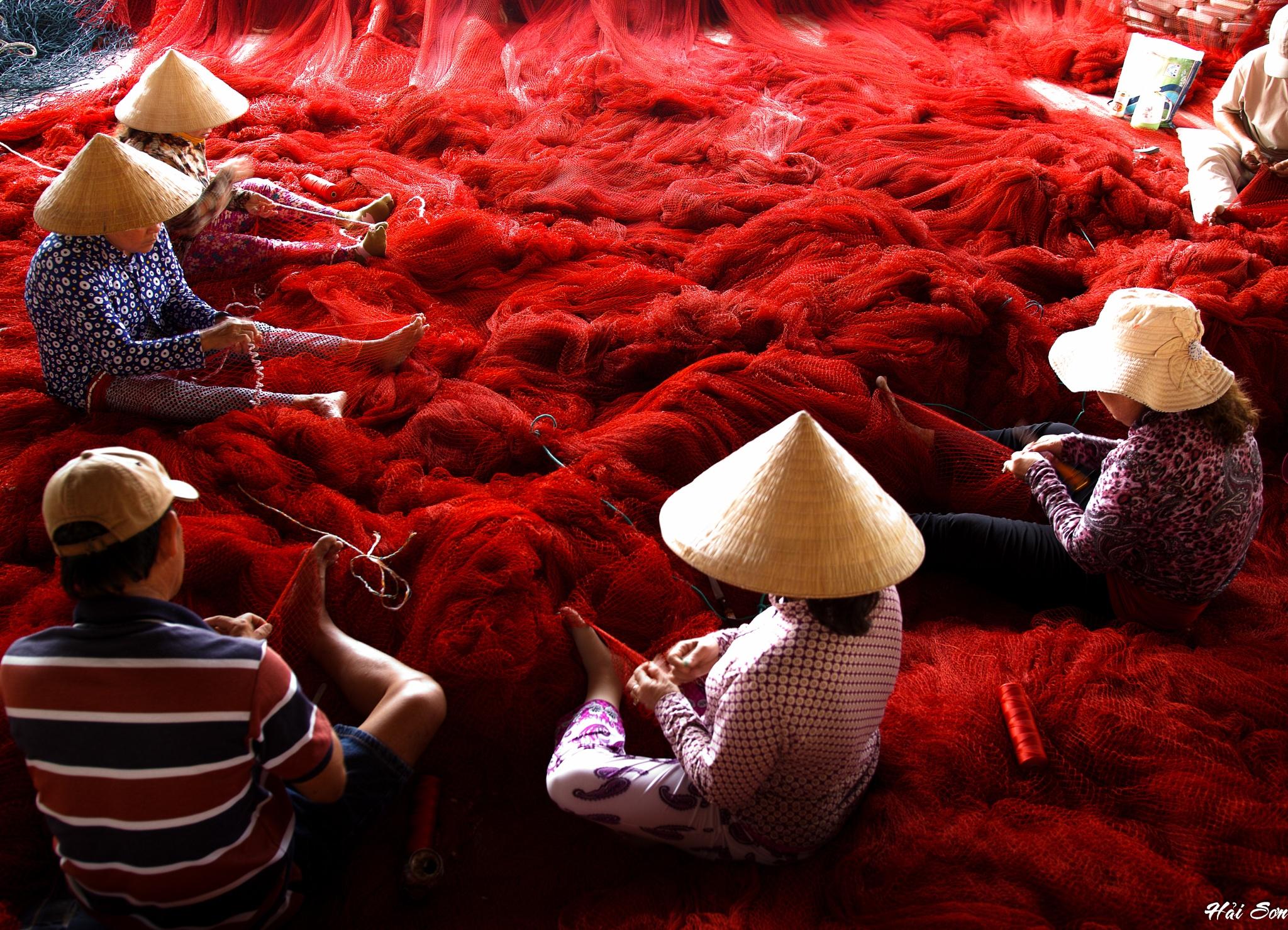 Untitled by Hải Sơn
