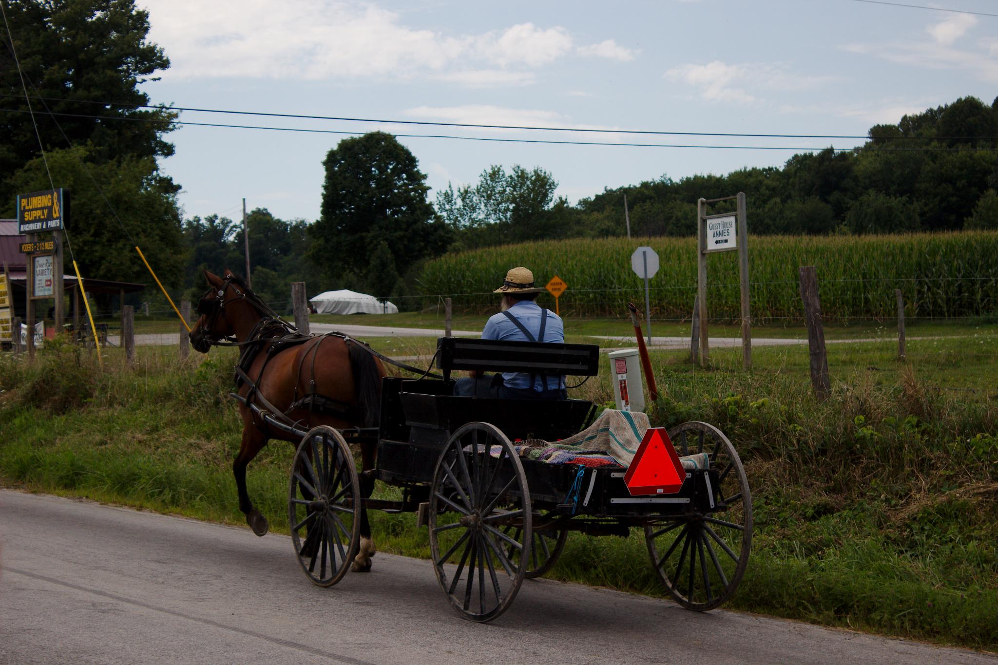 Holmes County Life by Presnell Photography