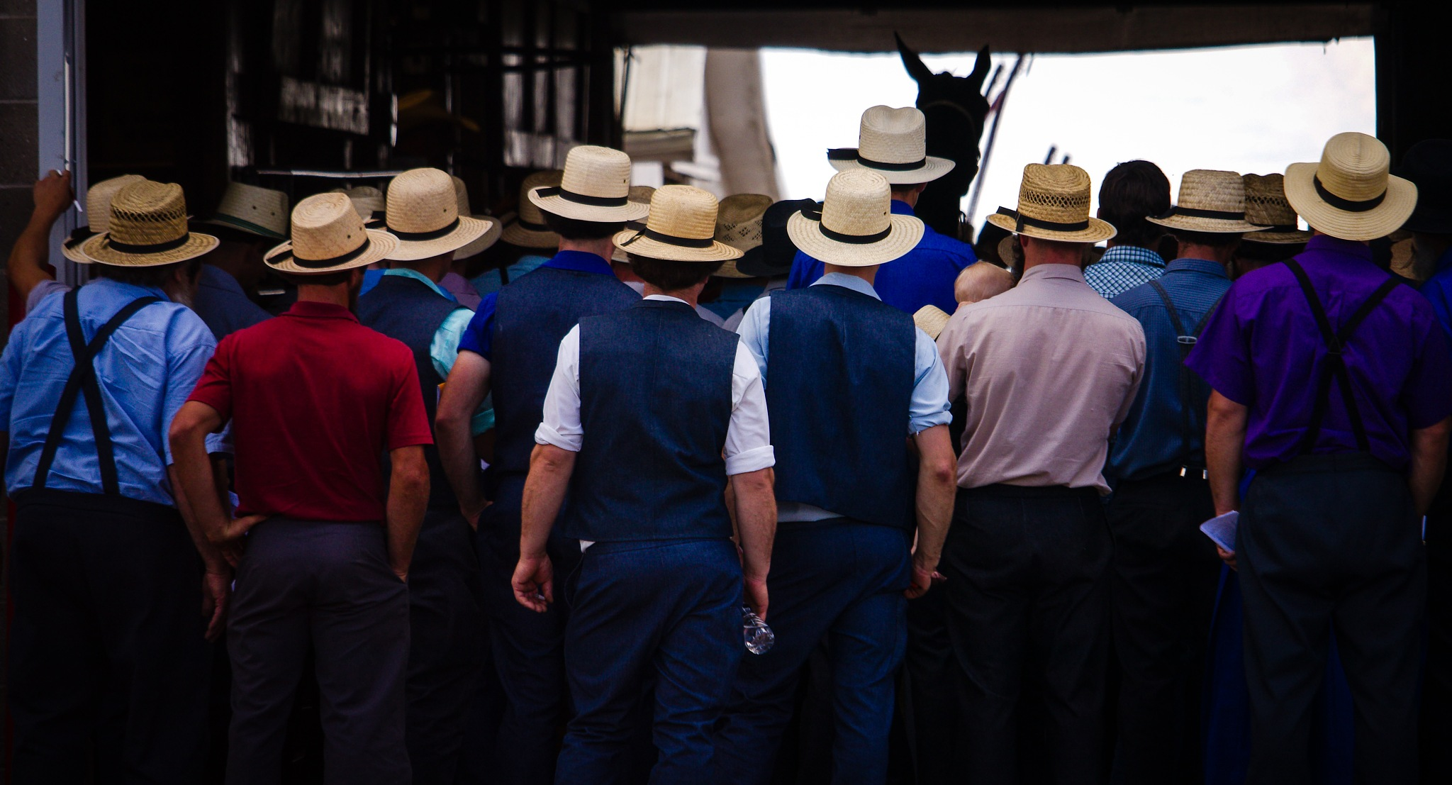 Amish Auction by Presnell Photography